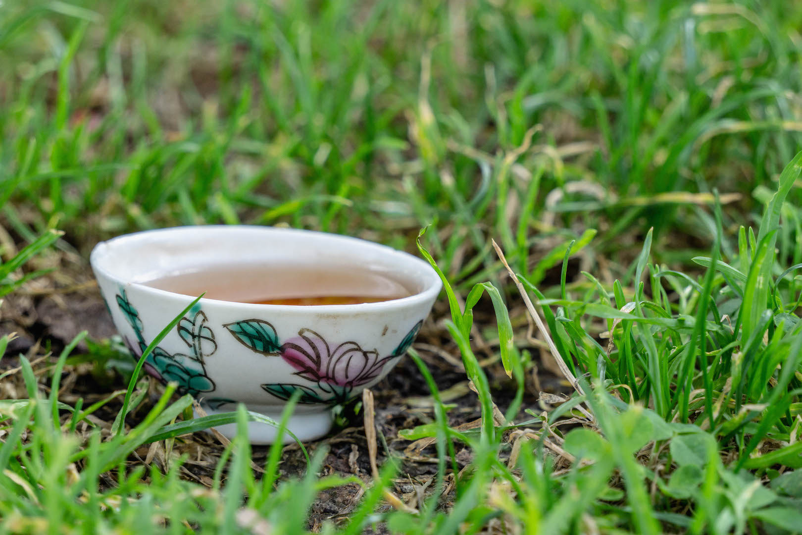 Tea of the month, Trinity.  A photo by Dalton Johnson Media,  www.daltonjohnsonmedia.com  or  @daltonjohnsonmedia
