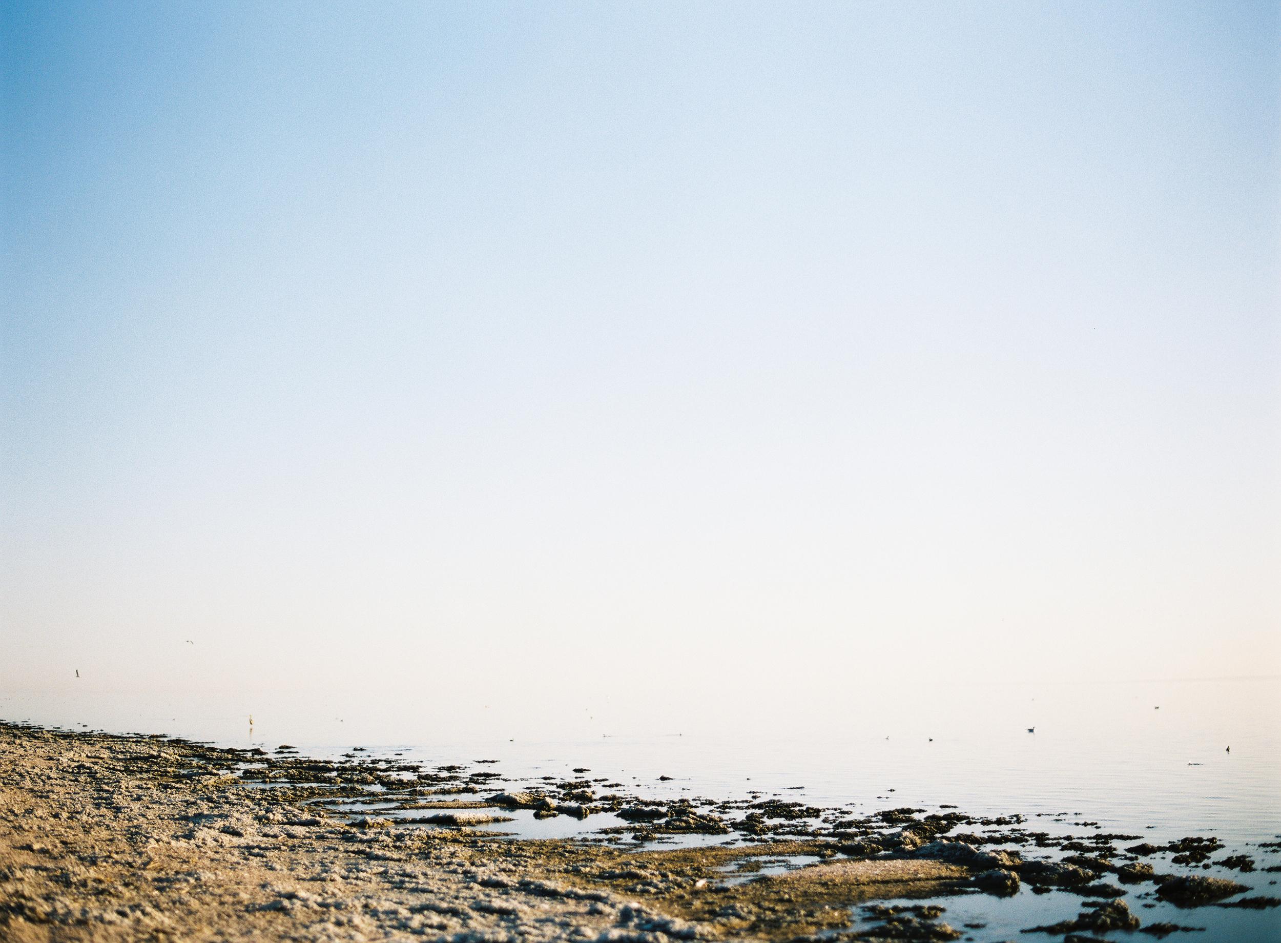 Jen_Wojcik_Photography-002.jpg