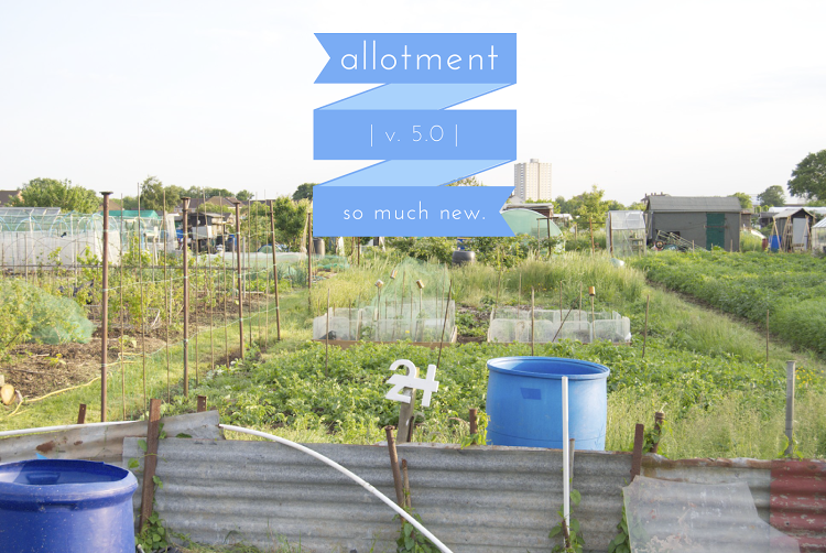 allotmentvs5.0.png