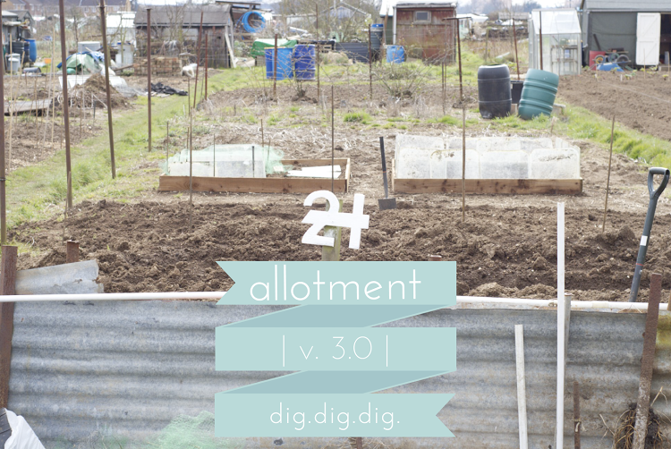 allotmentv3.png