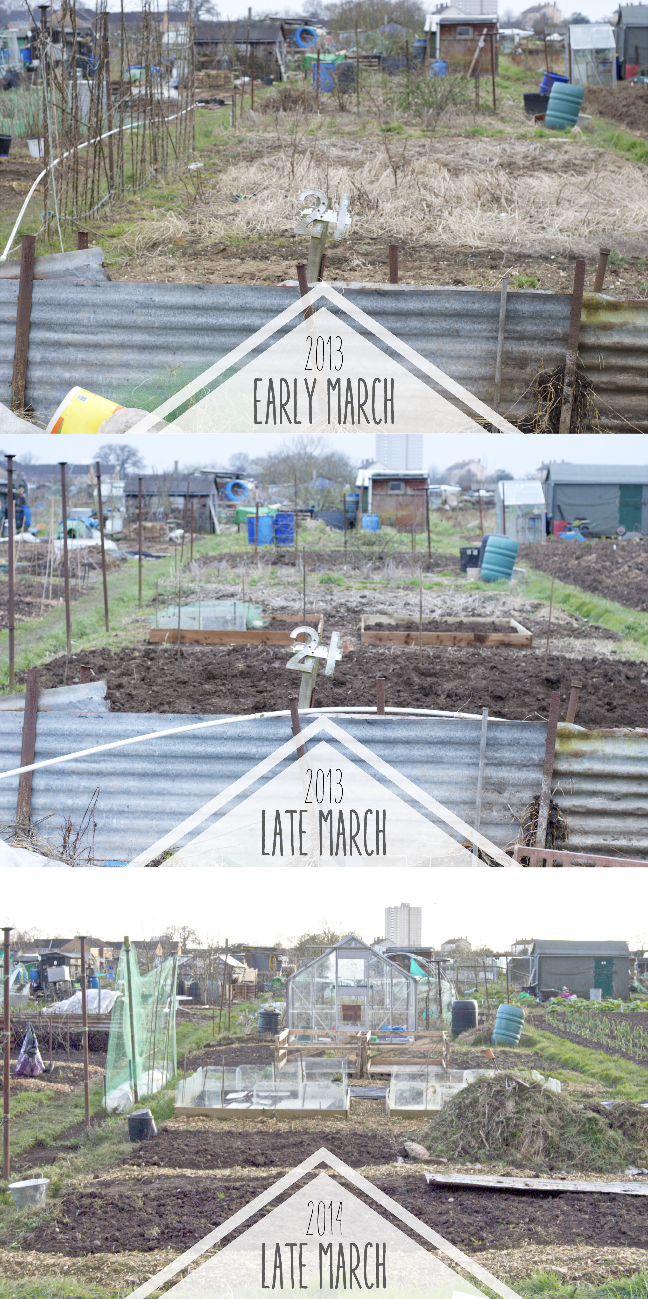 Allotment progress -01.png