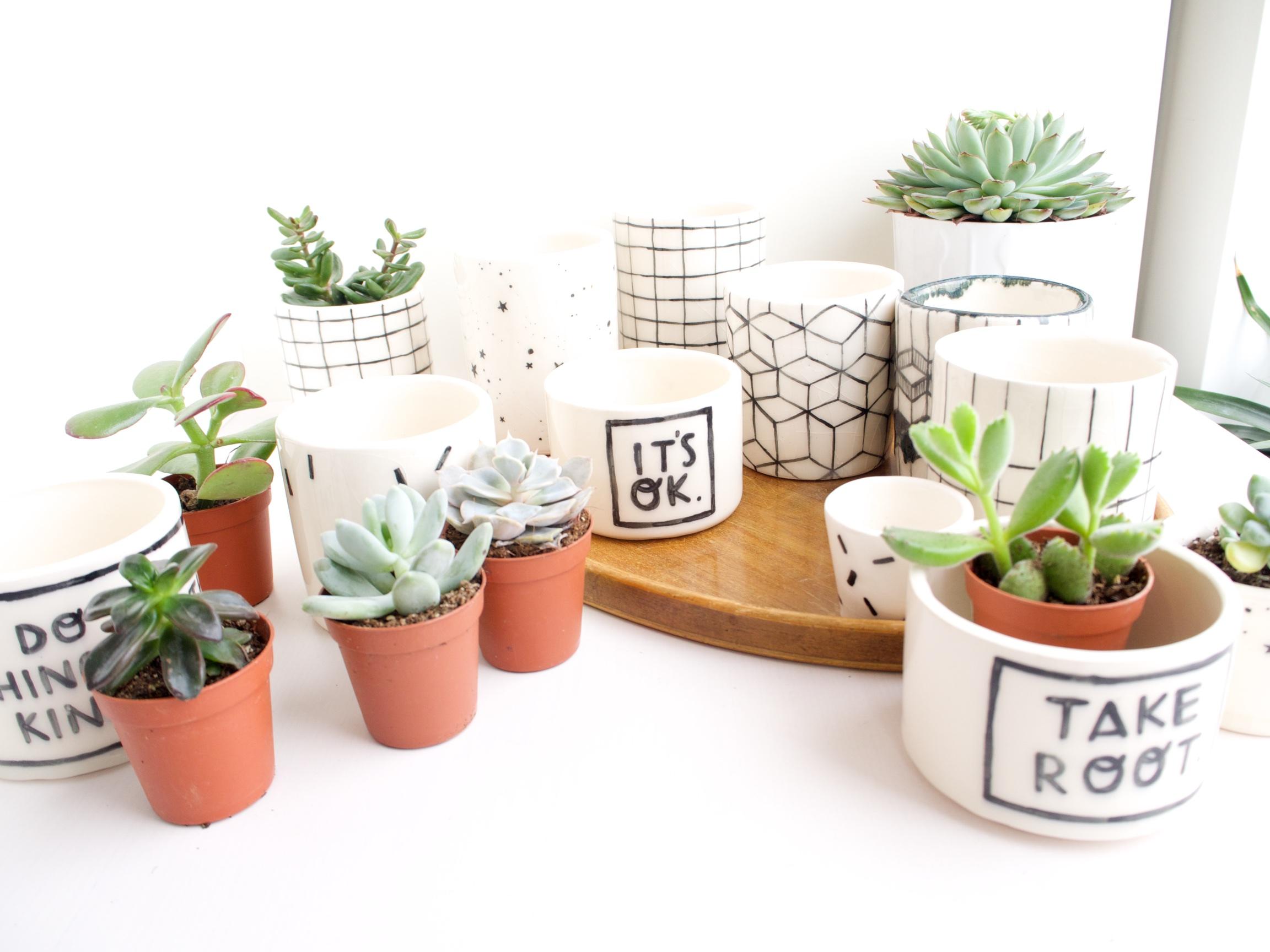planters 3.jpg
