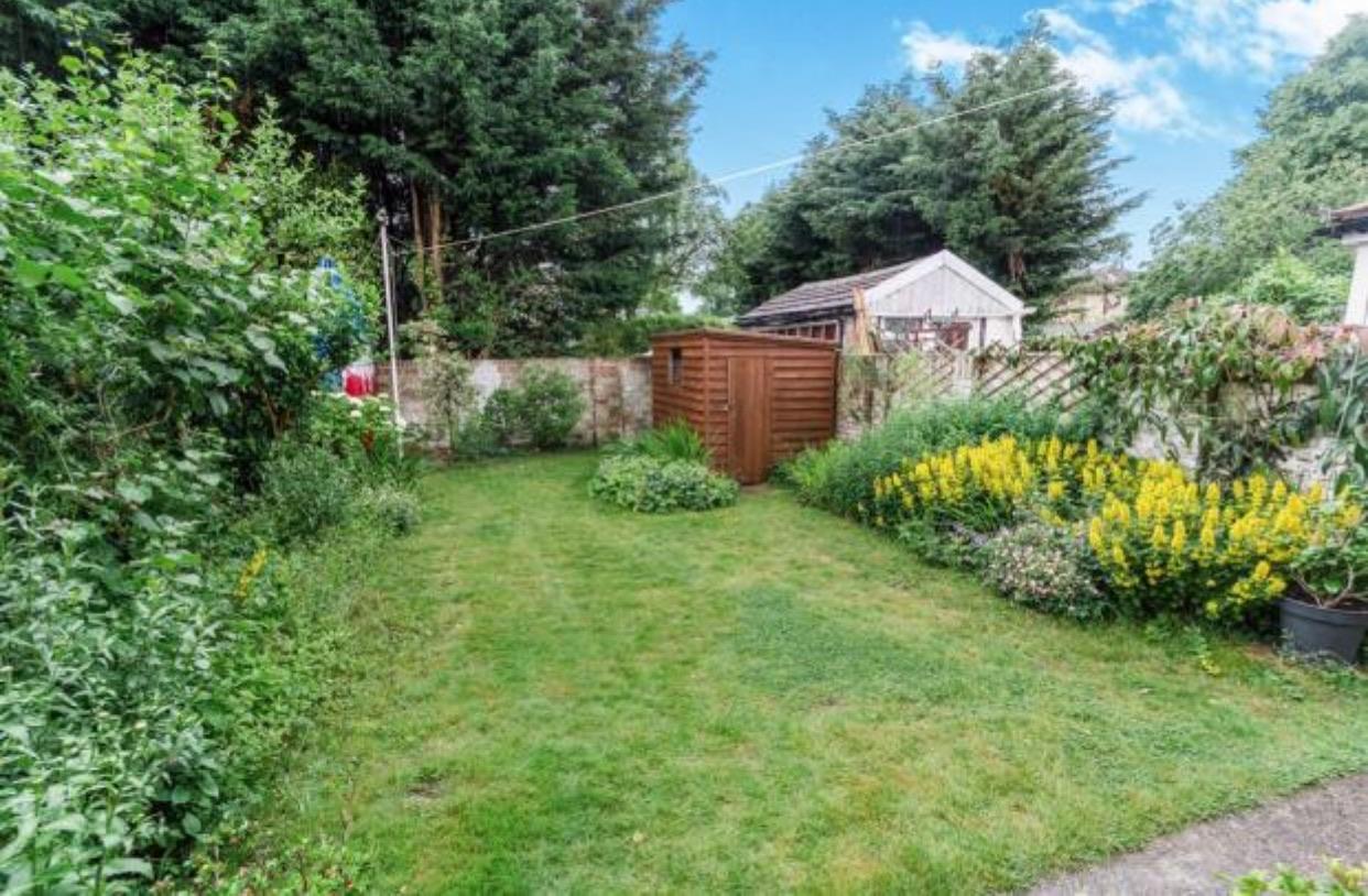Our little south facing garden