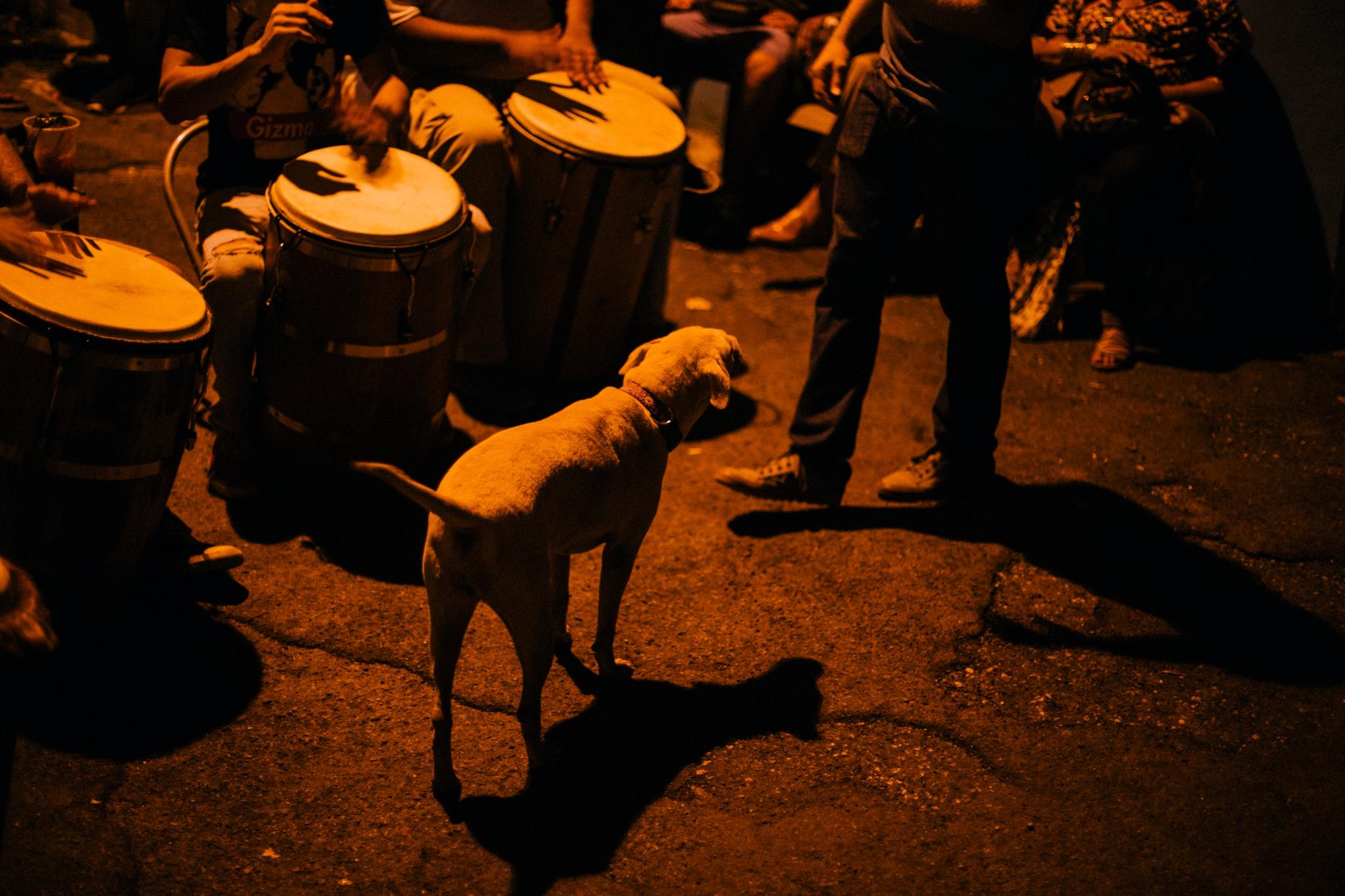 brianacarrion.com_0290.jpg