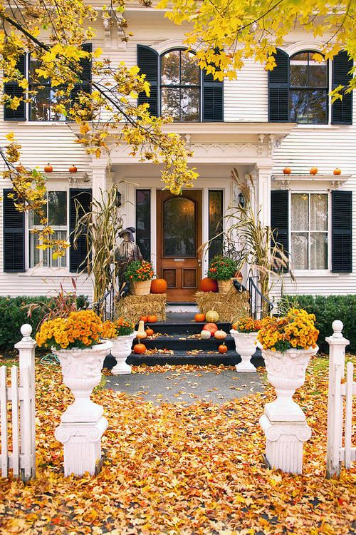 Yh51m6XXSISdslbfF8jA_Autumn-Fall-Home-pumpkins-orange-yellow.jpg