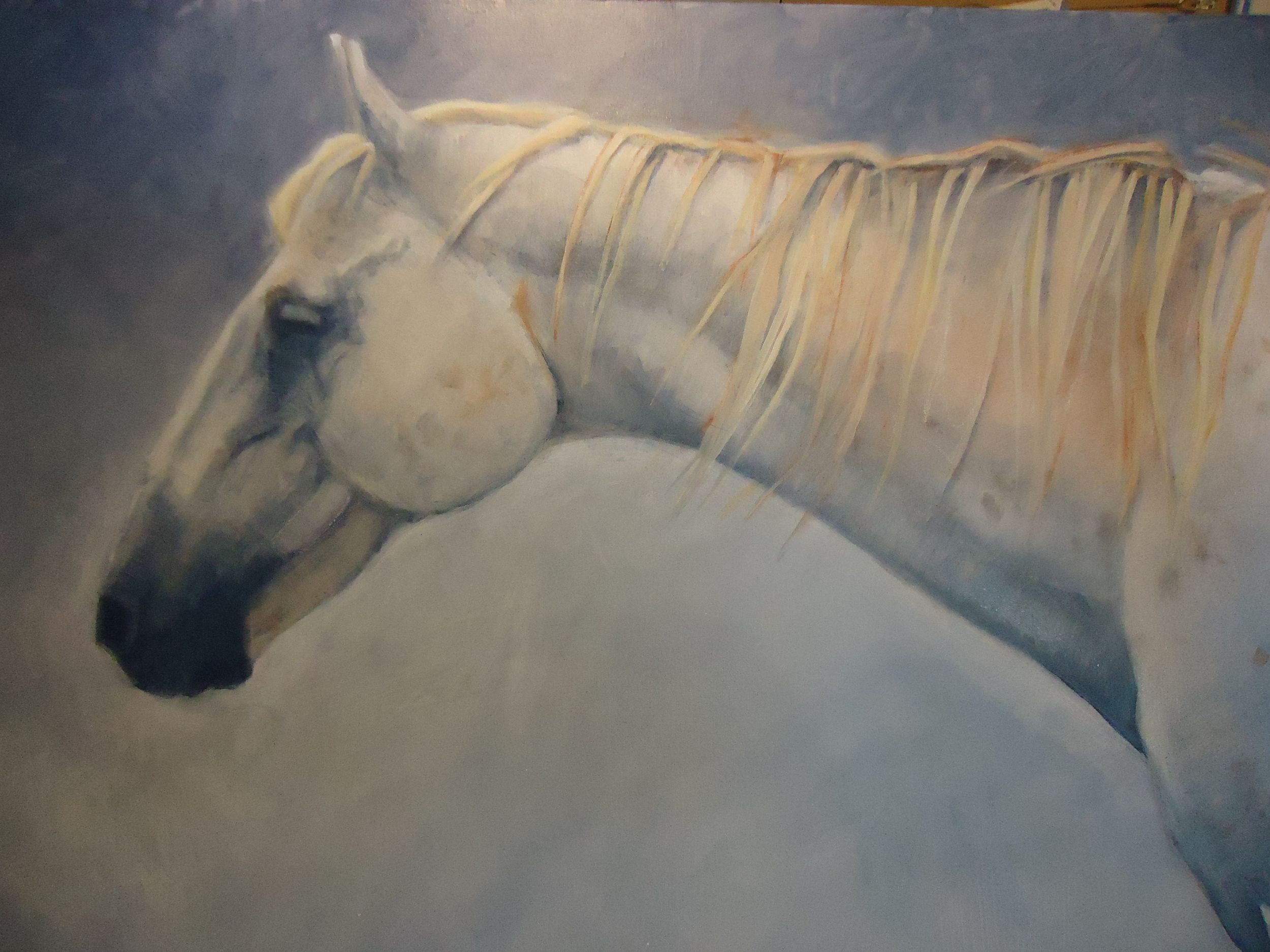 horse on canvas 2.jpg
