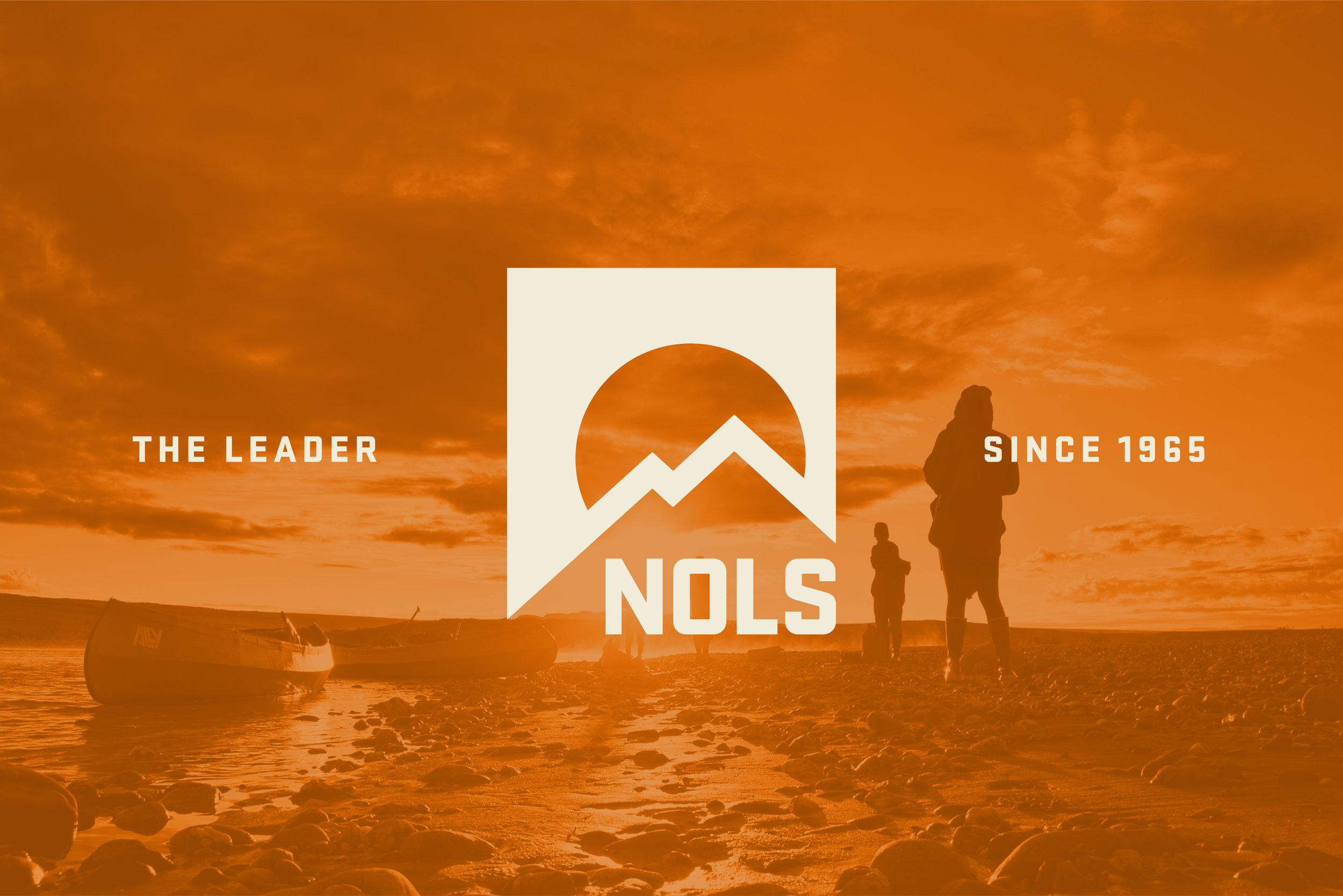 NOLS-Branding-Masthead@2x-100.jpg