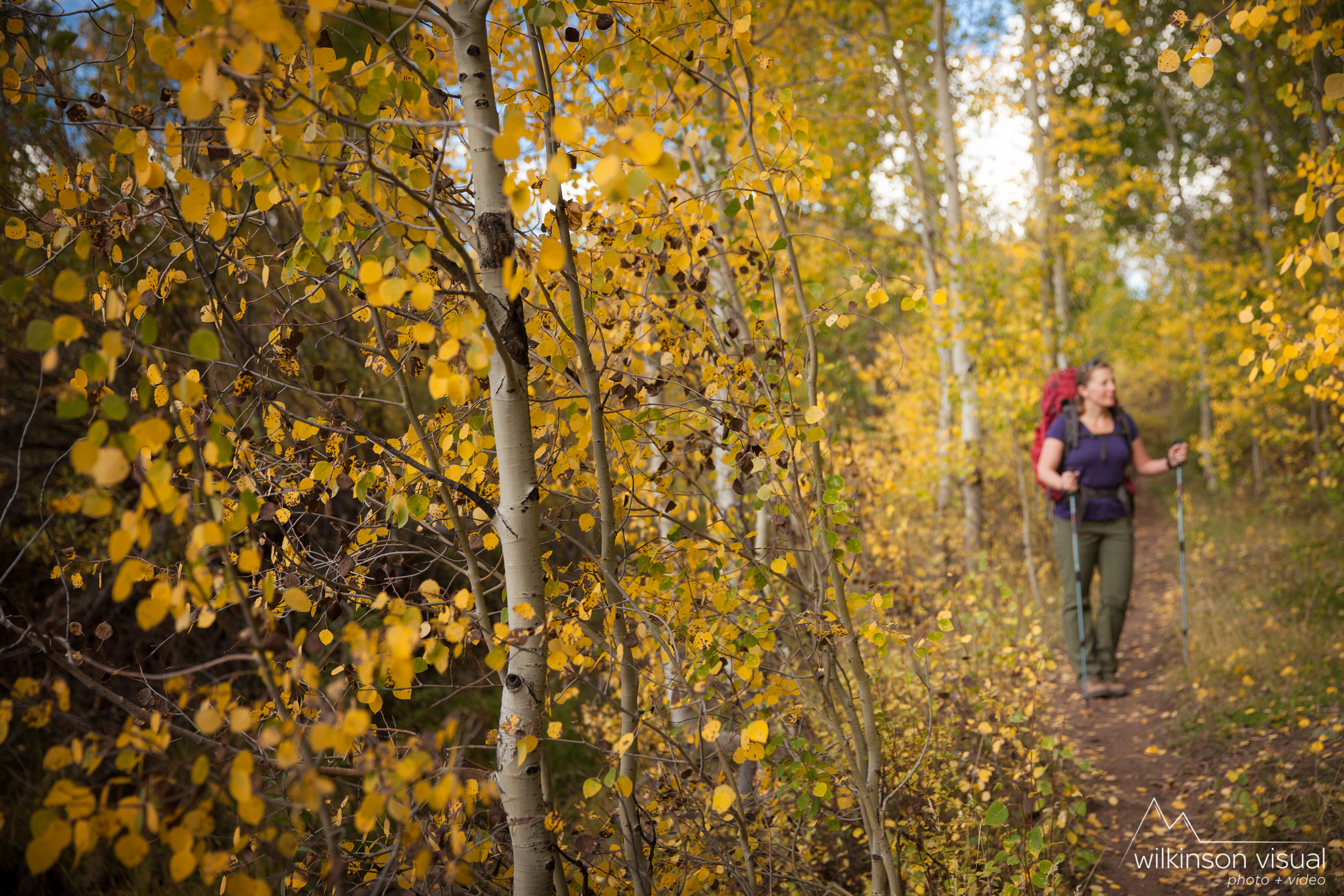 Jennifer Meunier stops to enjoy the colorful aspens while hiking in the San Juan National Forest, Colorado.