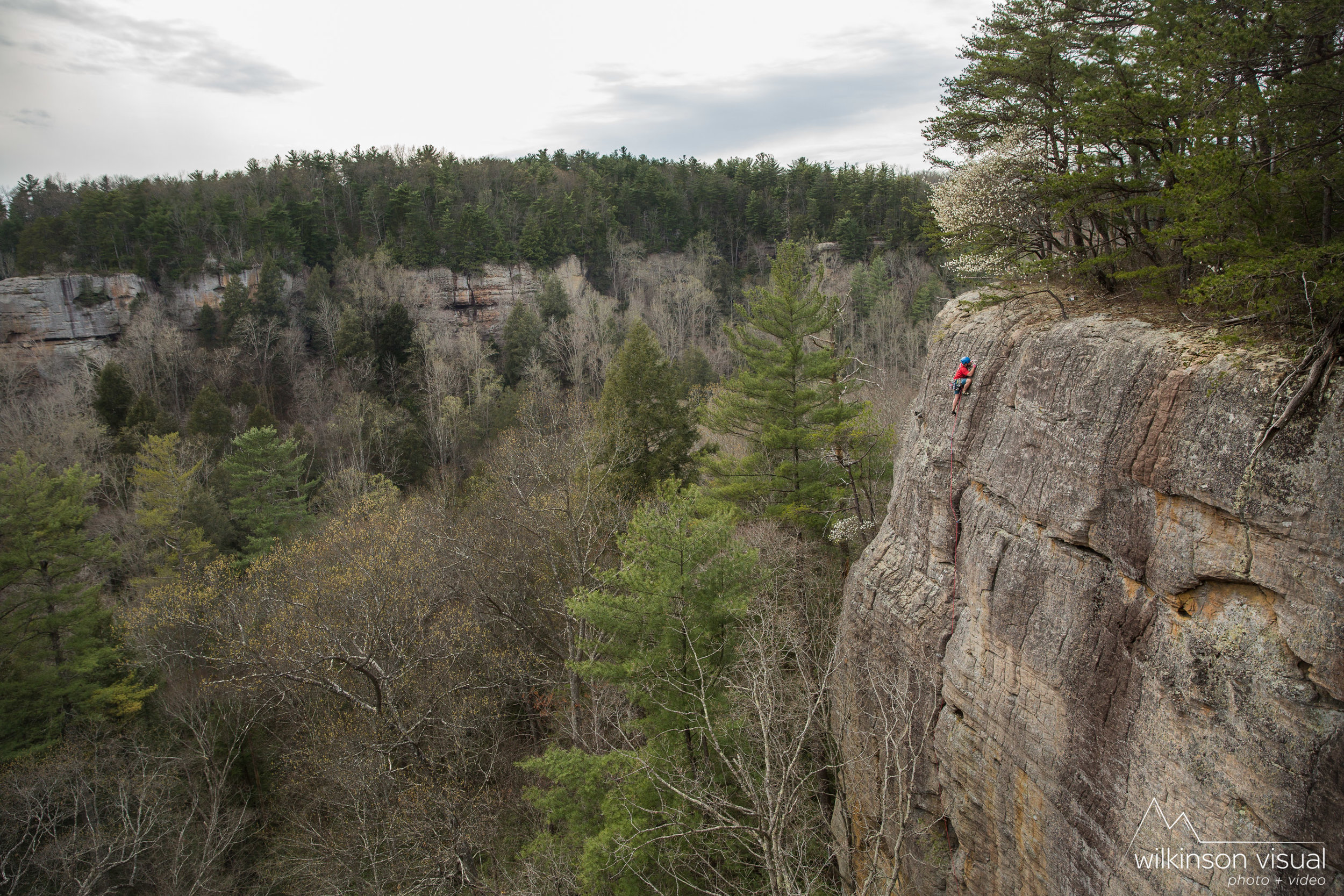 A climber nearing the top of a first ascent not far from Kentucky's Red River Gorge.