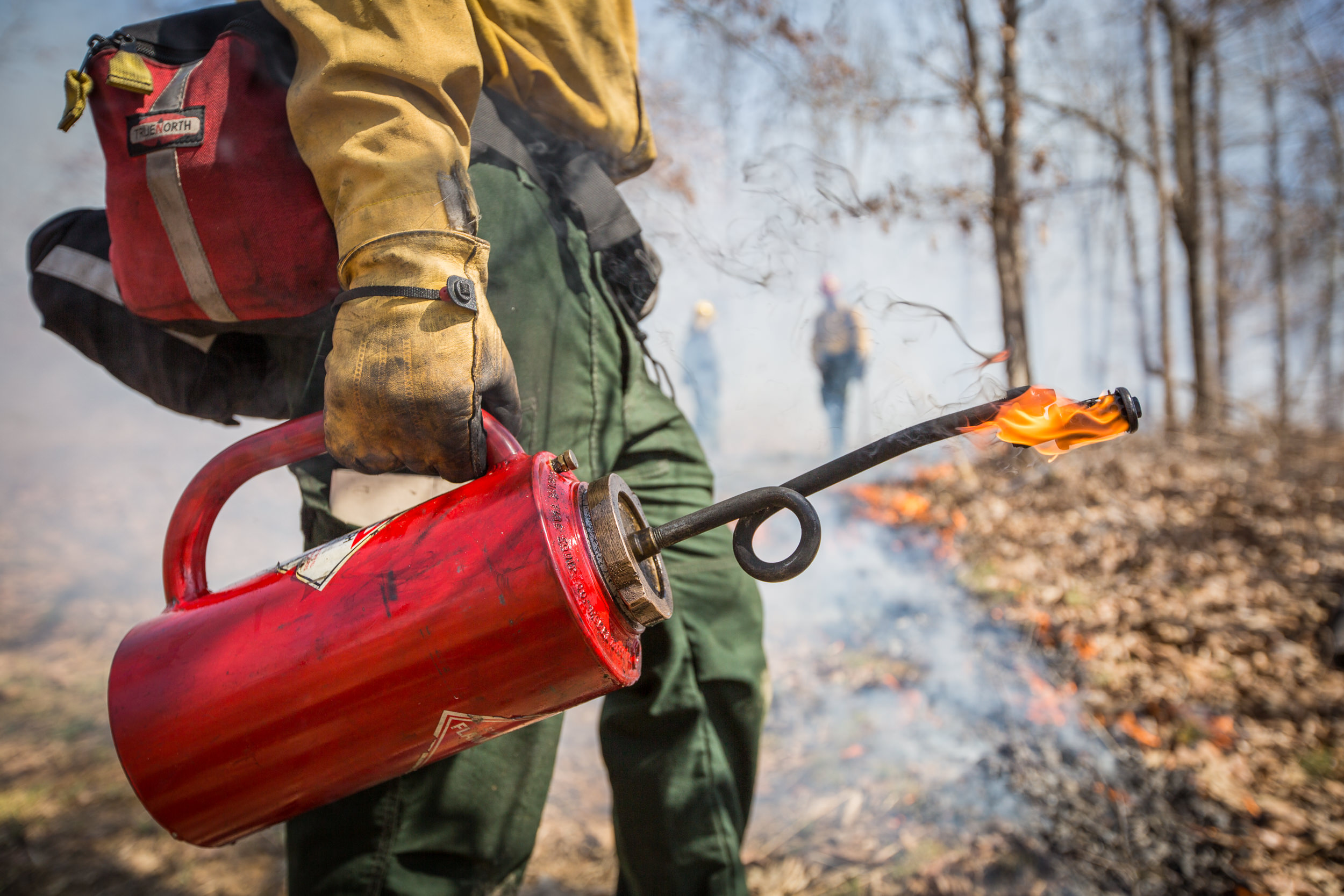 Controlled burns by The Nature Conservancy and the USFS near Elizabethtown, Kentucky, at the Eastview Barrens Nature Preserve.