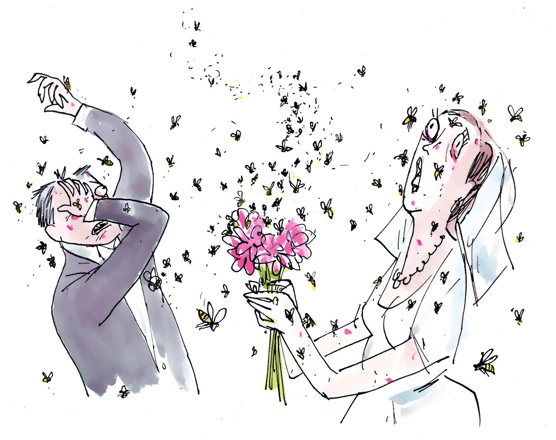 graham-roumieu-wedding-disasters.jpg