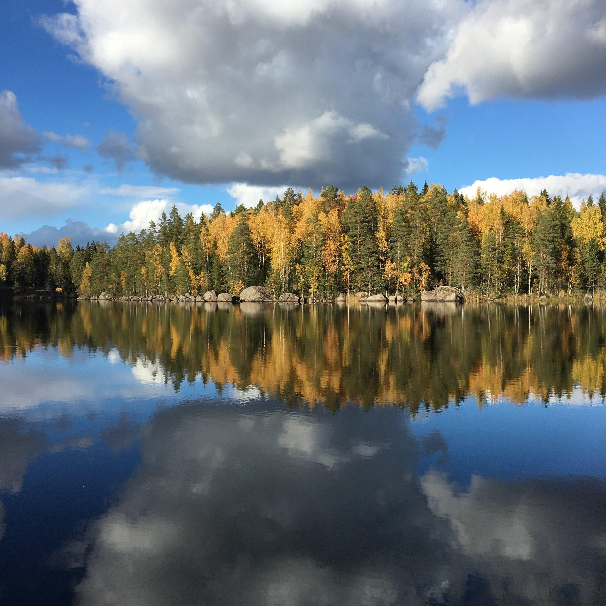 Ritajärven luonnonsuojelualue (a nature preserve near Arteles)