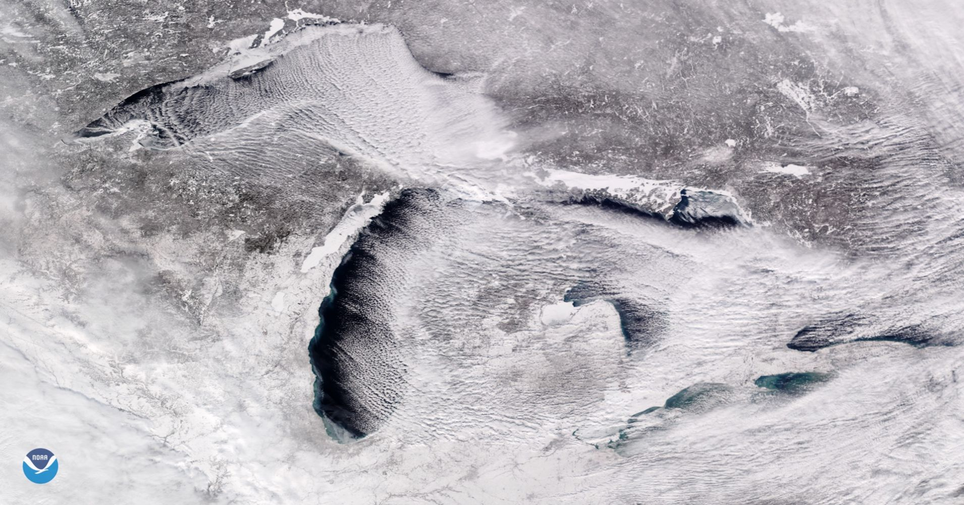 What the polar vortex looked like from space. That's Lake Superior on the far left.  https://www.nesdis.noaa.gov/content/frigid-air-and-cloud-streets-stream-across-great-lakes