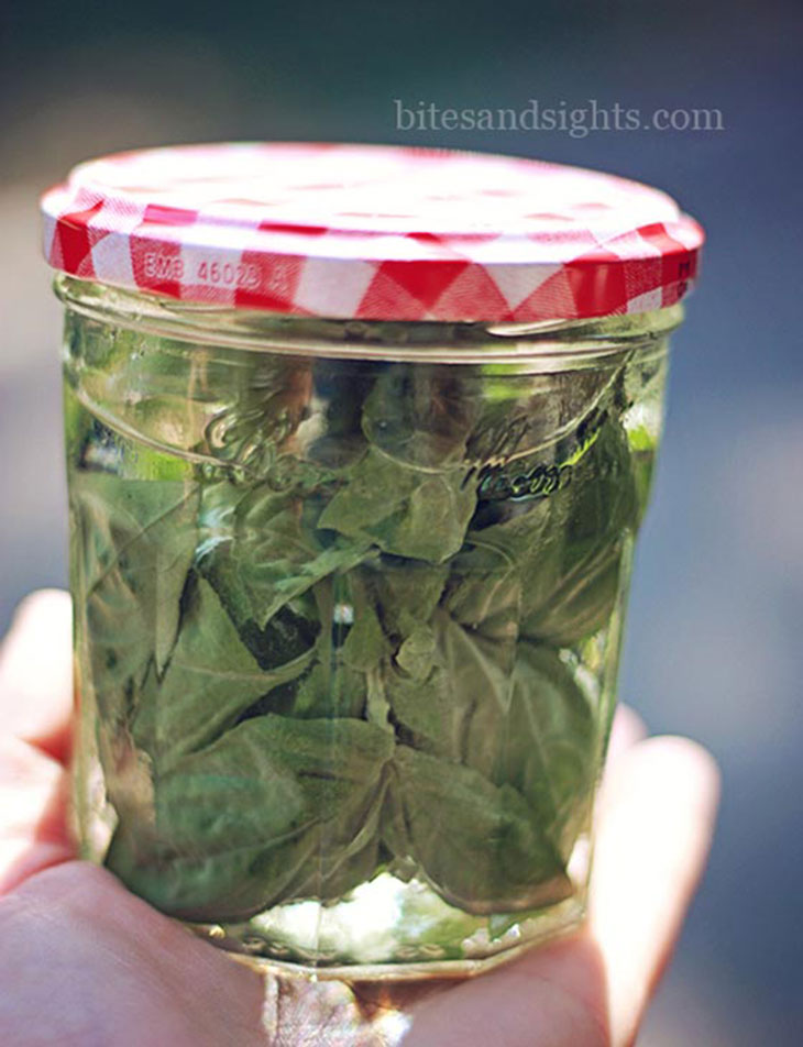 holding the jar of basil infused vodka