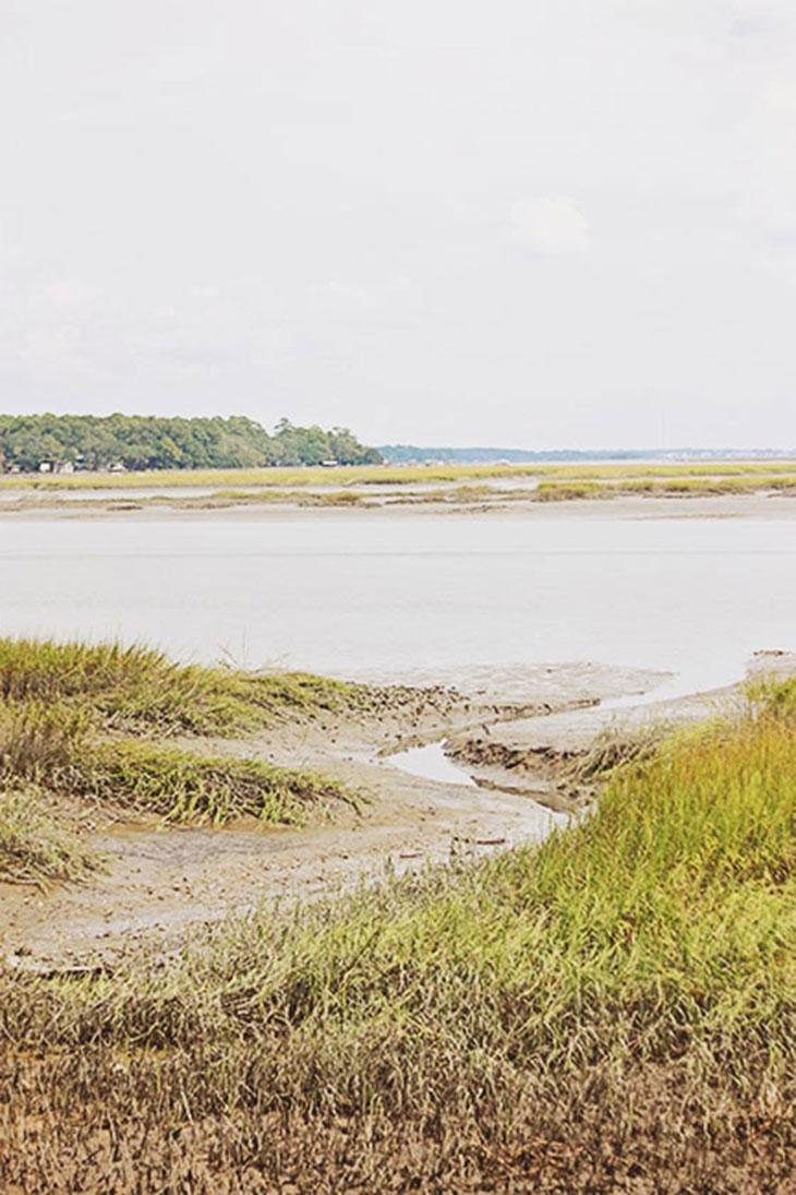 marsh at palmetto bluff