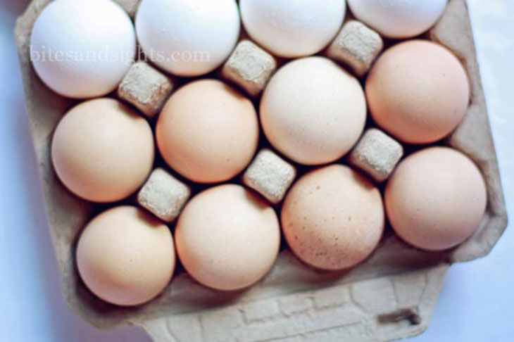 shady oak farm fresh eggs