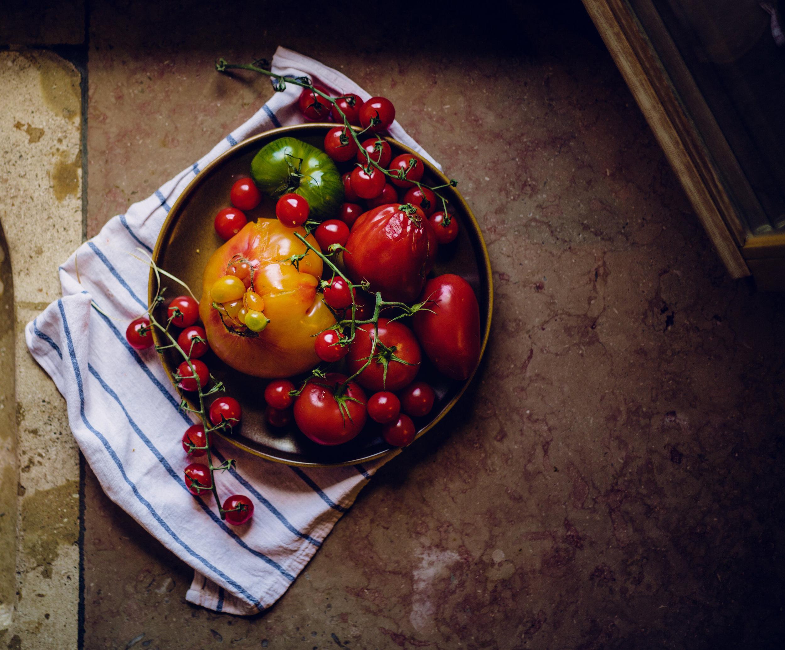 provence tomatoes on the windowsill.jpg