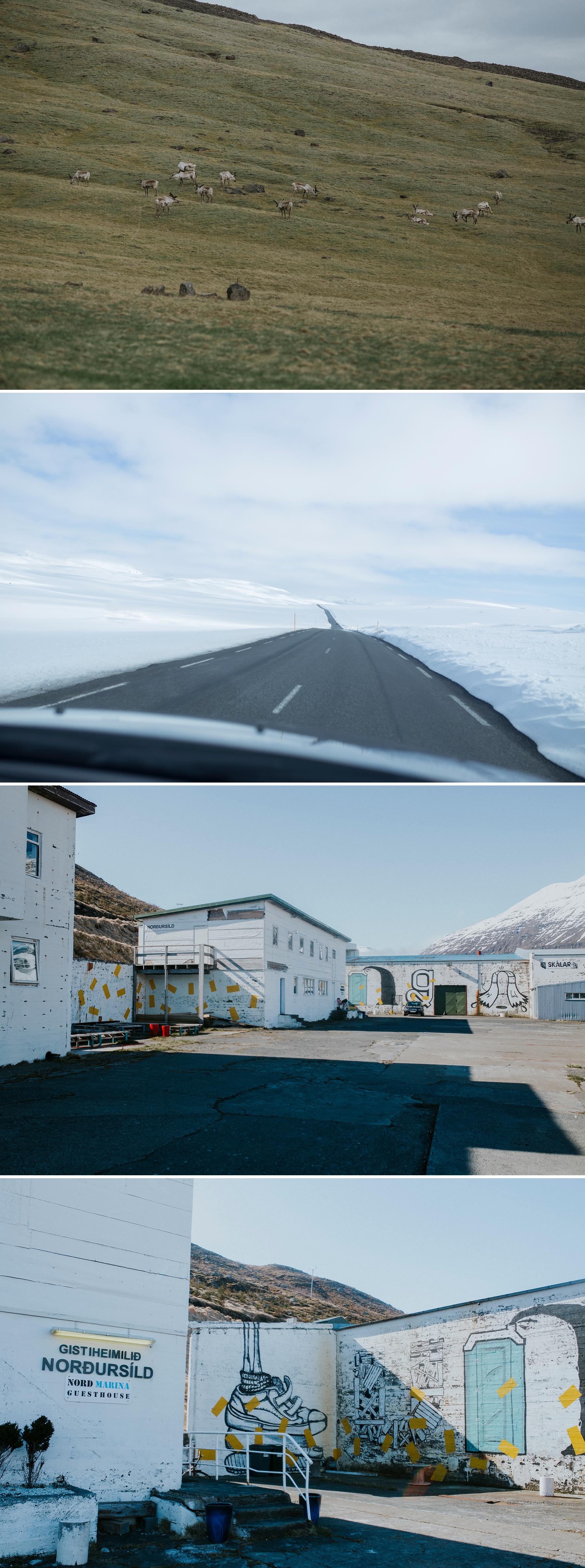 Iceland_elopement_photographer
