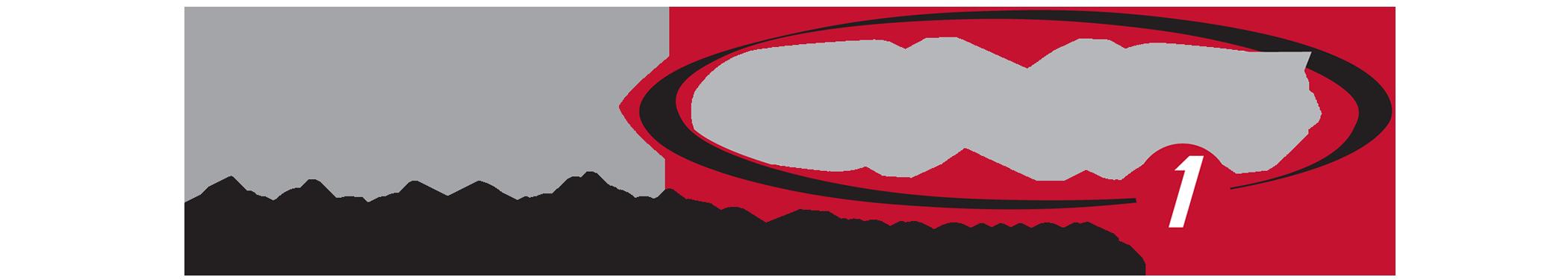 2100 maxone_gray_logo.png