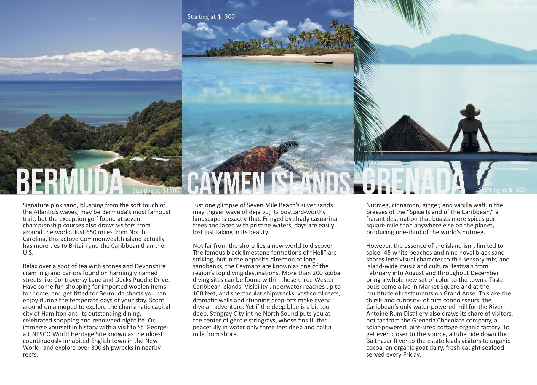 Travel Brochure2.jpg