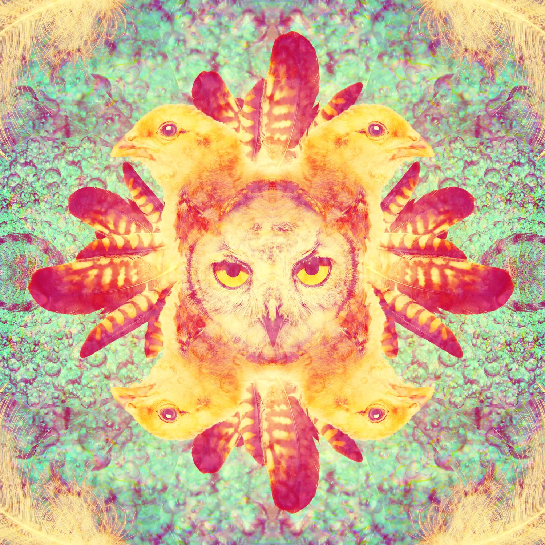2011.002_shaman.says.jpg