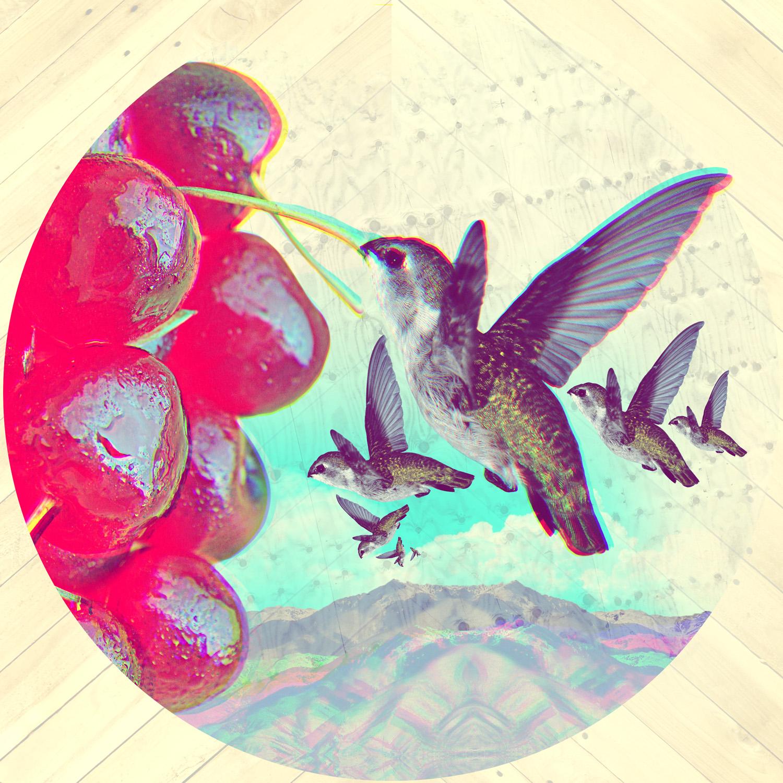 2011.147_hummingbird.jpg