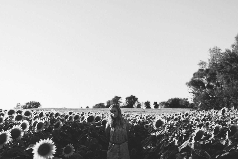 Sunflower Field Grinter's Farm in Lawrence KS-14.JPG