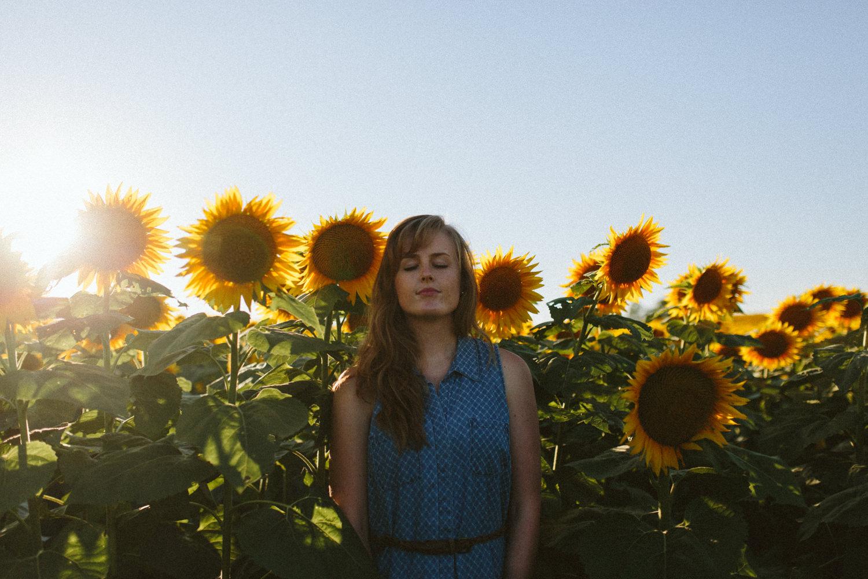 Sunflower Field Grinter's Farm in Lawrence KS-17.JPG
