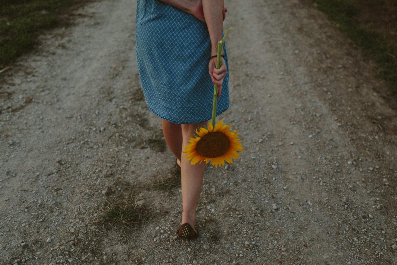Sunflower Field Grinter's Farm in Lawrence KS-40.JPG