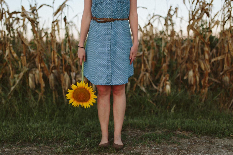 Sunflower Field Grinter's Farm in Lawrence KS-41.JPG