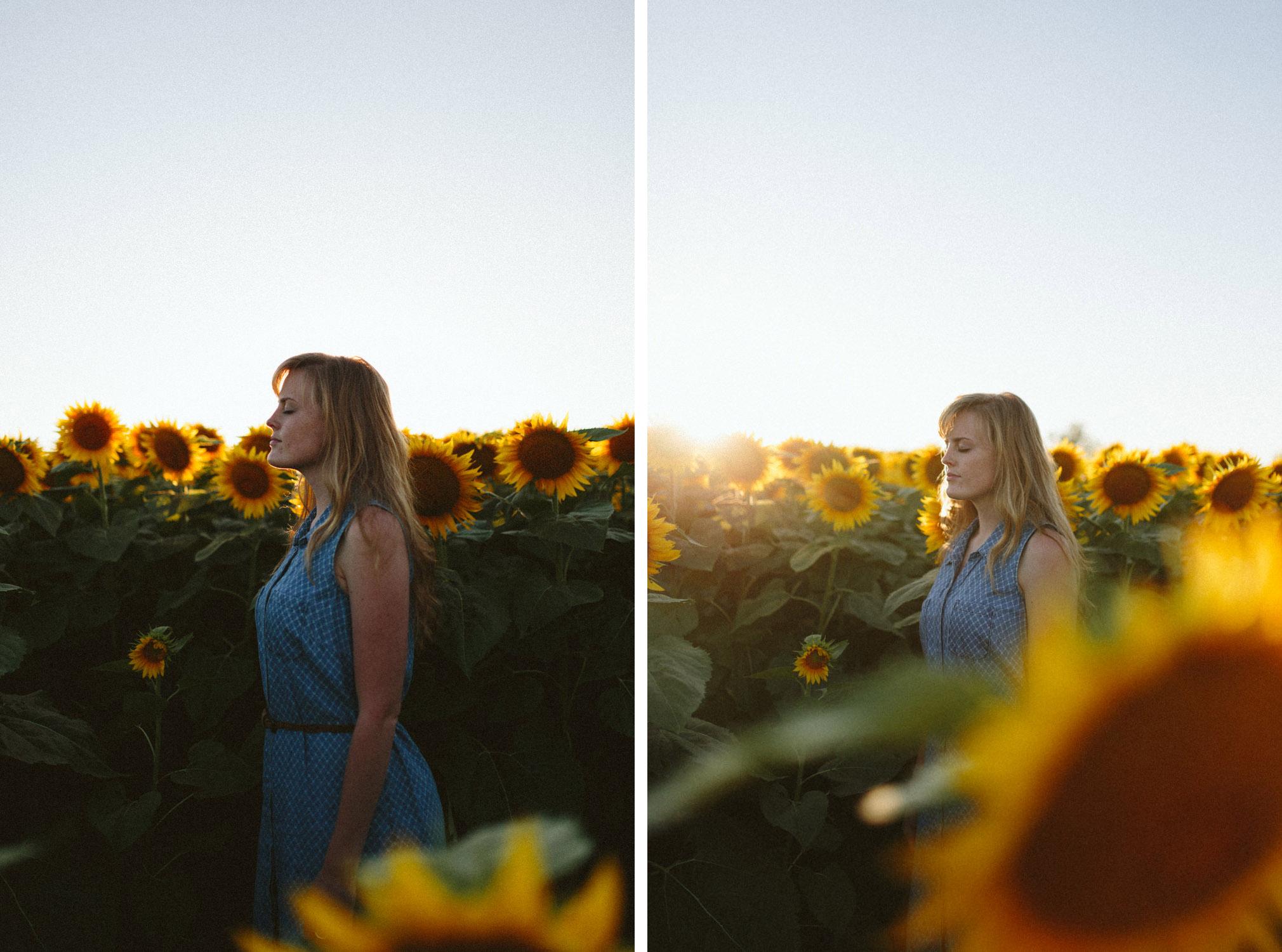 Sunflower Field Grinter's Farm in Lawrence KS-36 copy.jpg