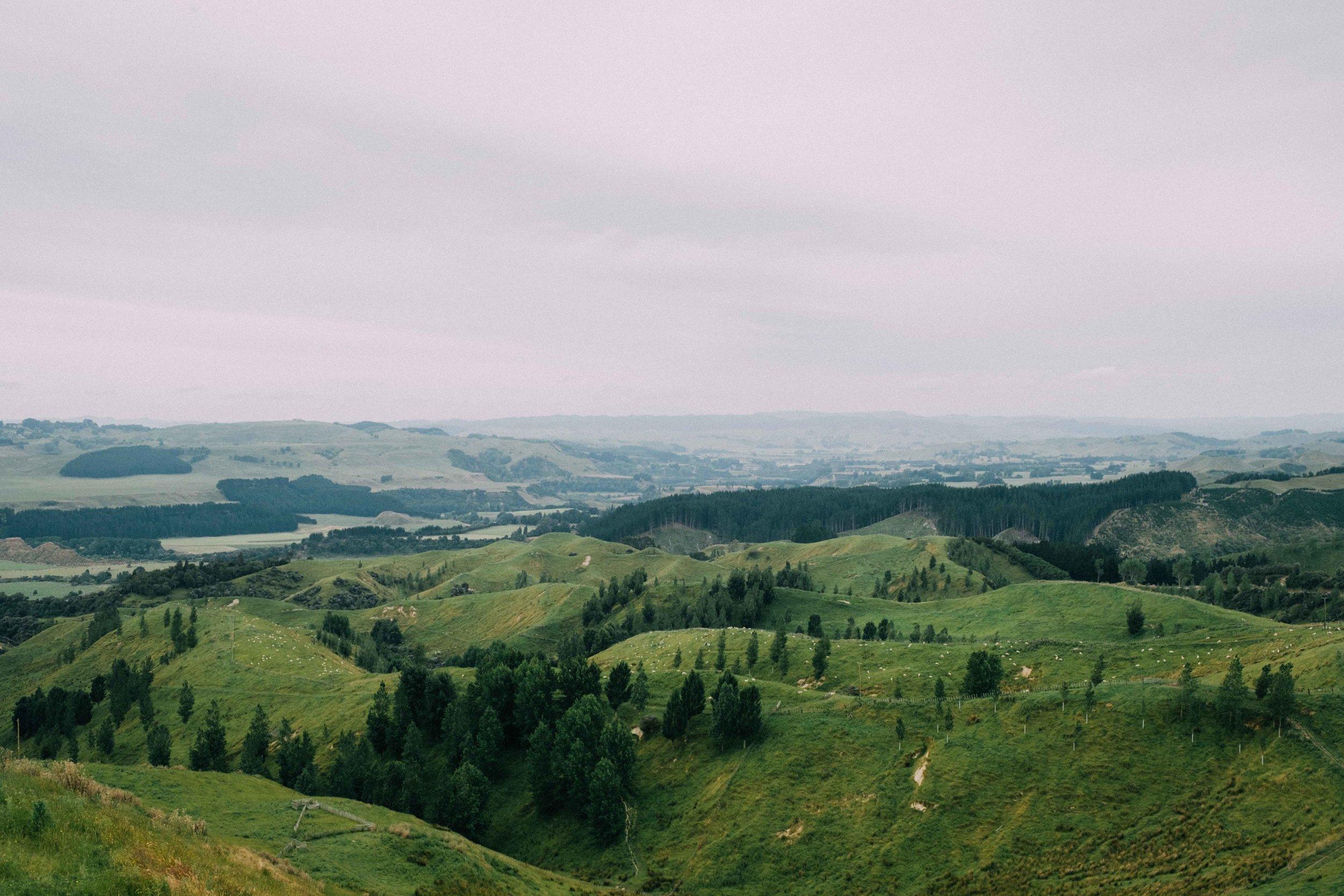 New Zealand small-11.jpg