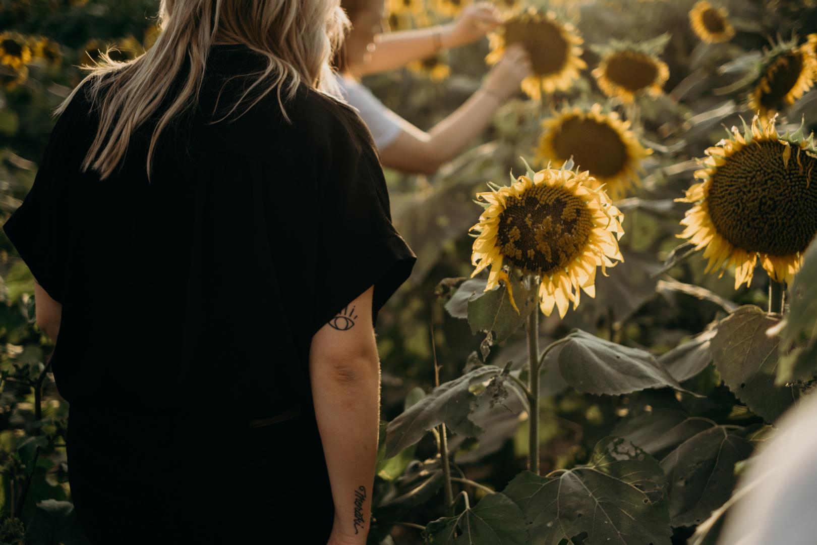 20170909_Grinters Farms Sunflower Fields Lawrence Kansas__2.jpg