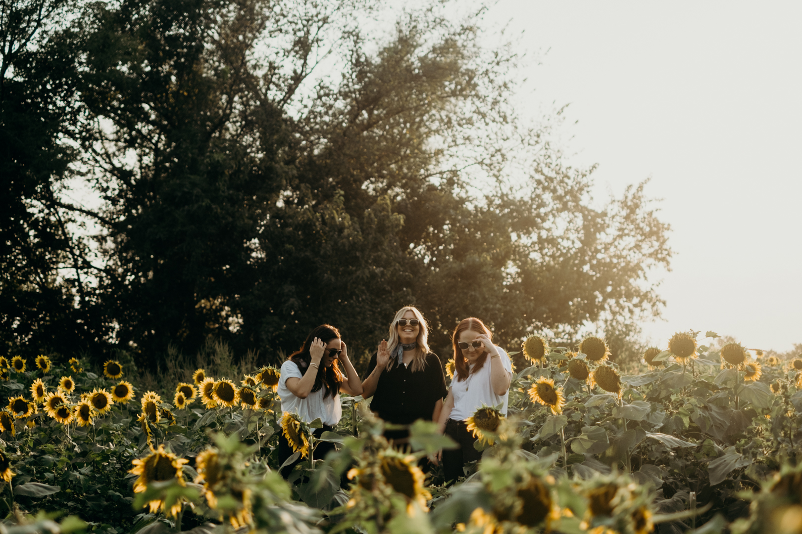 20170909_Grinters Farms Sunflower Fields Lawrence Kansas__6.jpg