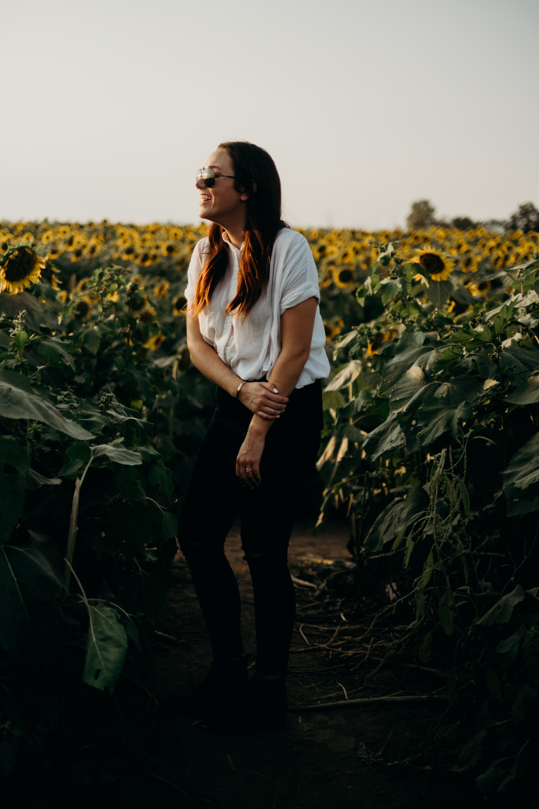 20170909_Grinters Farms Sunflower Fields Lawrence Kansas__14.jpg