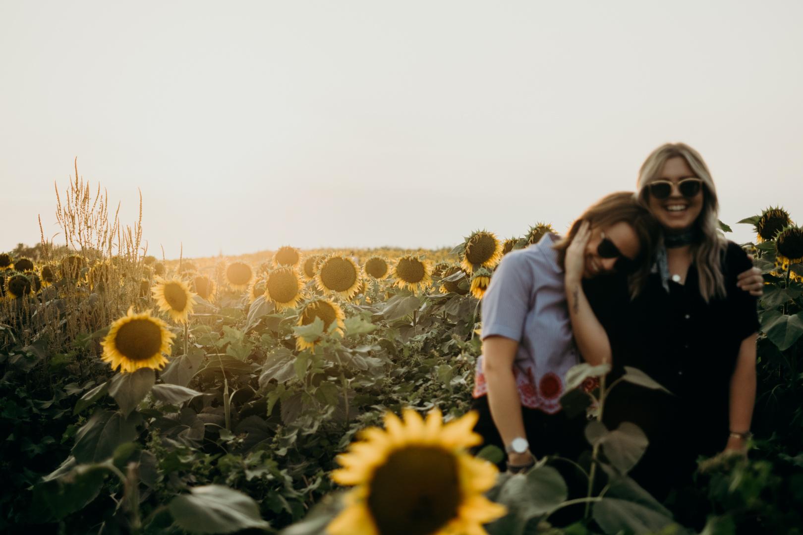 20170909_Grinters Farms Sunflower Fields Lawrence Kansas__20.jpg