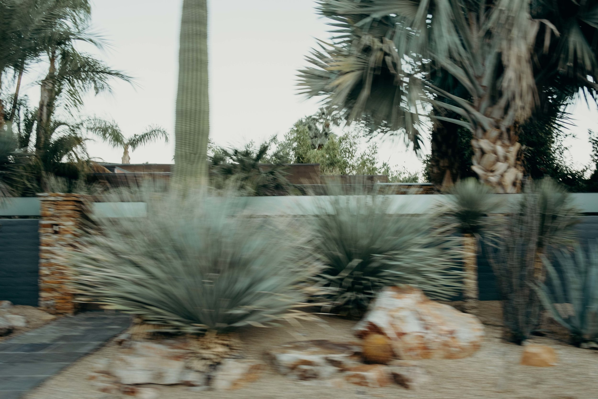 20171005_Palm Springs Travel Guide_45.jpg