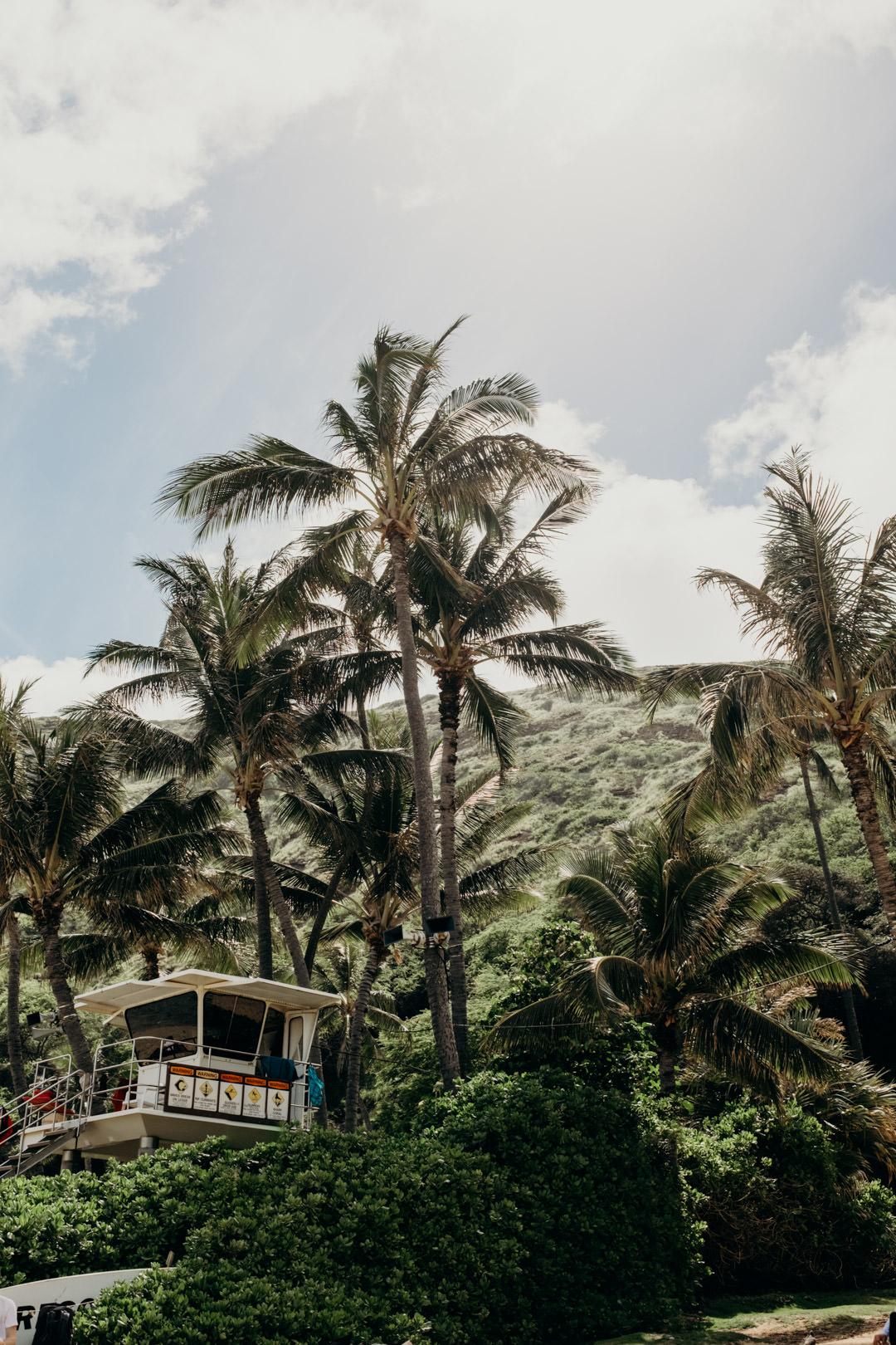 20180420_Visit Hawaii_North Shore_16.jpg
