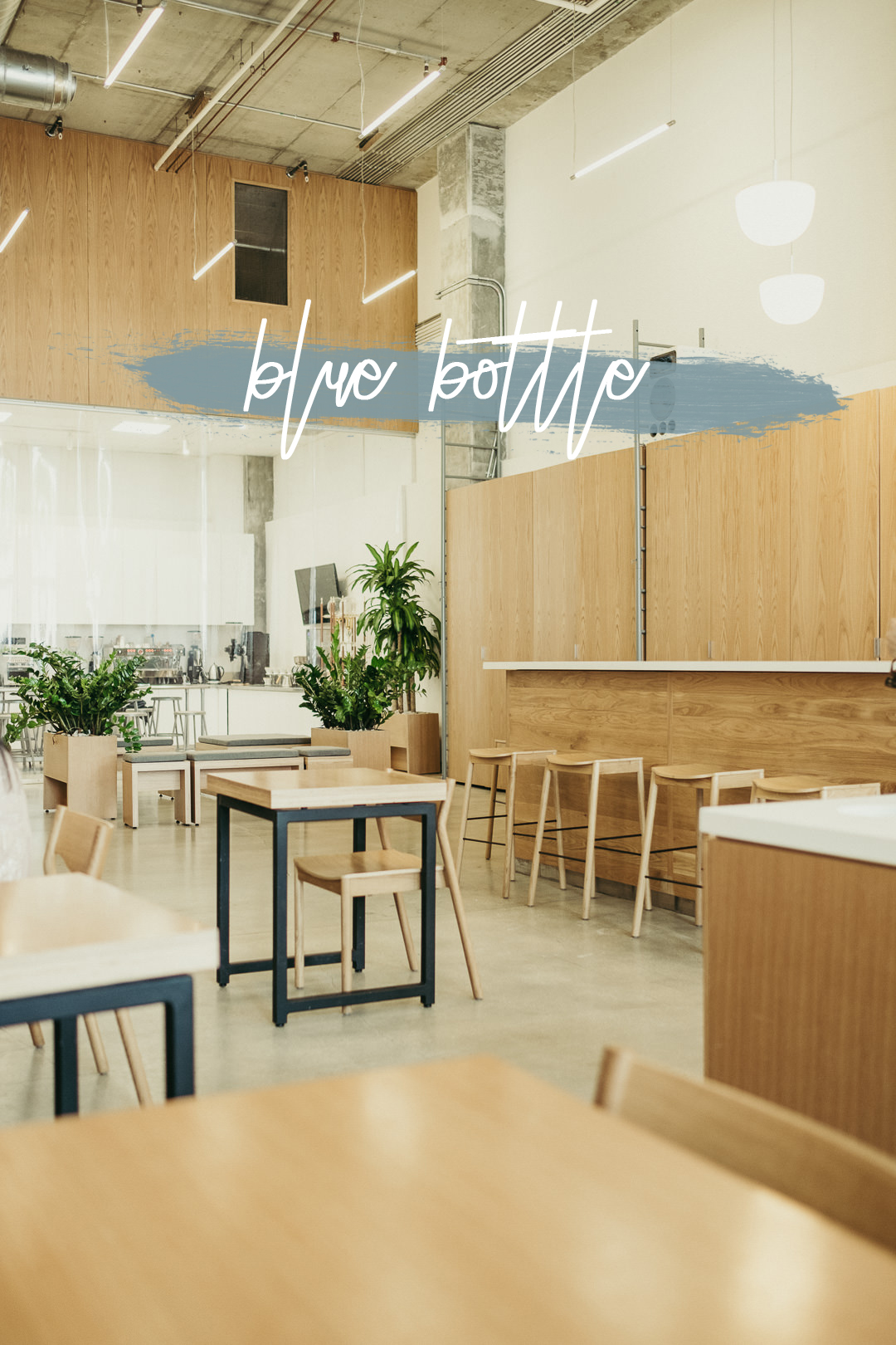 Blue Bottle - Miami Coffee Shops - Ali Happer Photo_6 copy.jpg