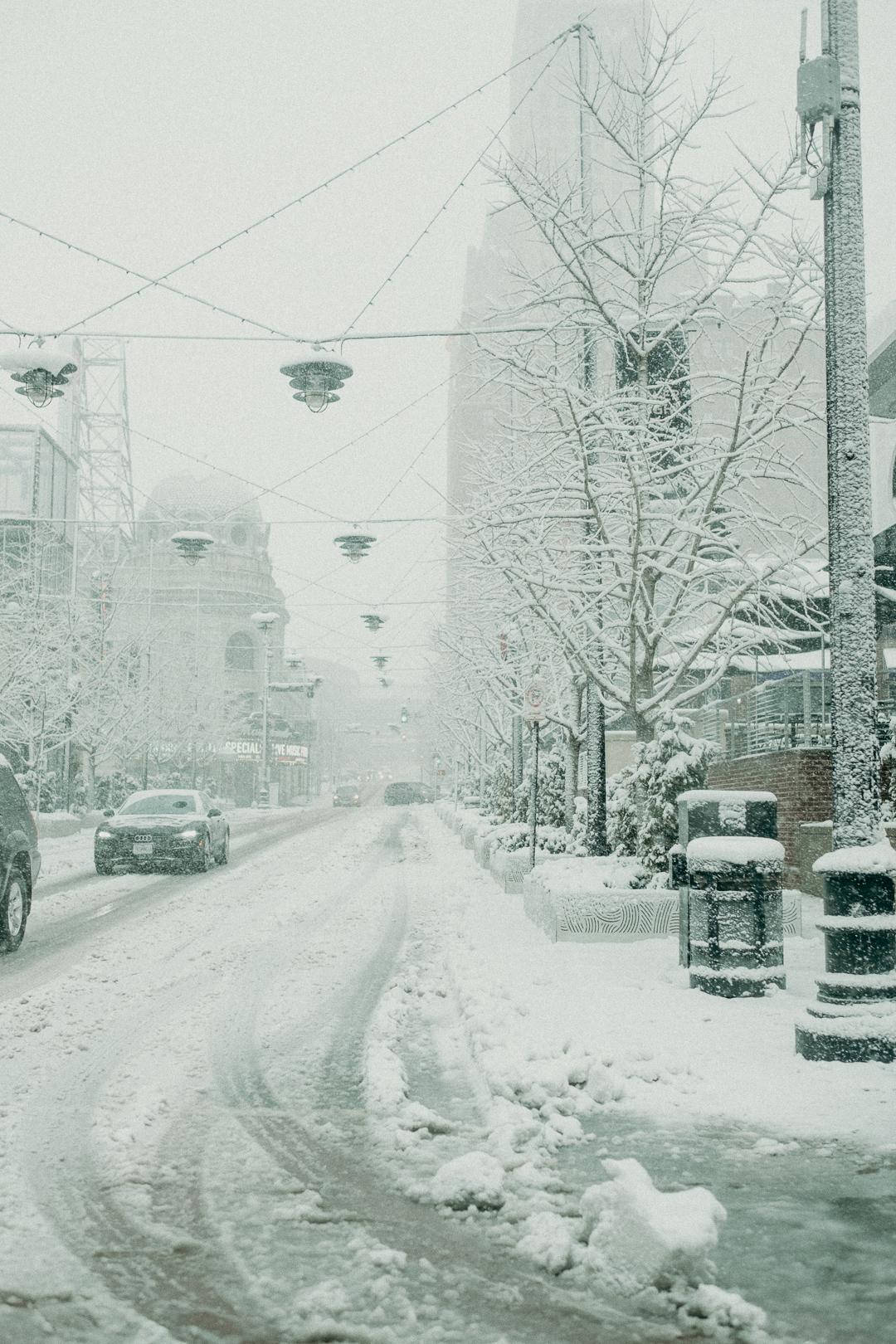 20190112_snowydaysin_kansascity_alihapperphoto_2.jpg