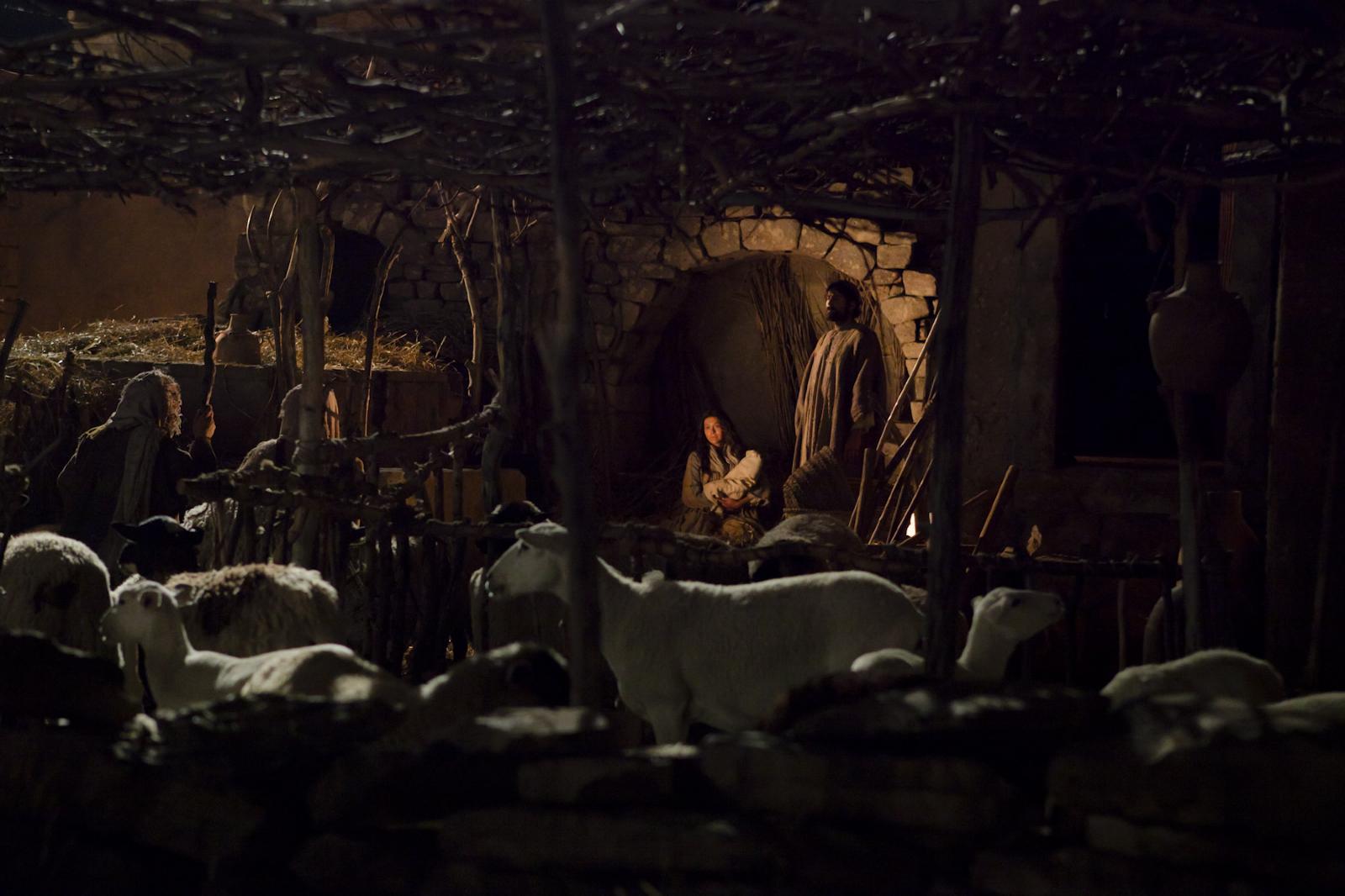 bible-video-nativity-shepherds-1400900-print.jpg