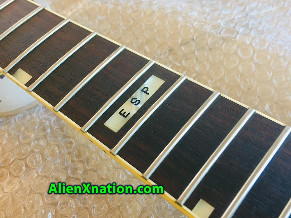 esp-m1-custom-1985-0011.jpg