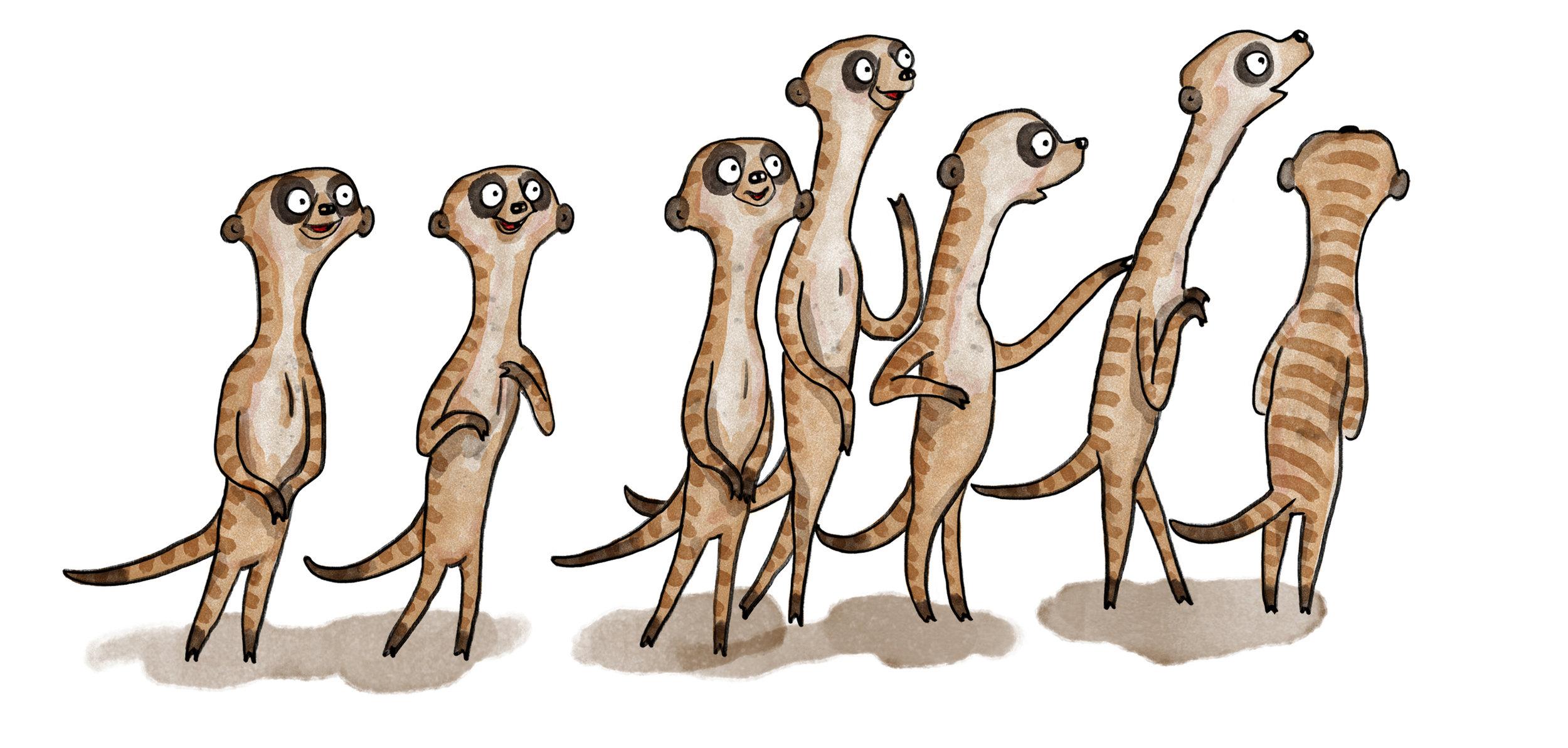 PRINT Meerkats.jpg