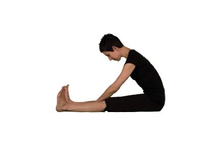 sitted-stretch.jpg