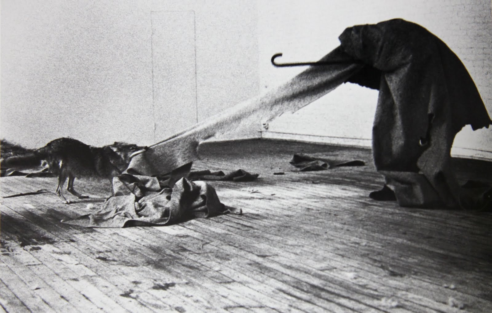 "Joseph Beuys, ""I Like America and America Likes Me.""  Performance at Rene Block Gallery (1974)."