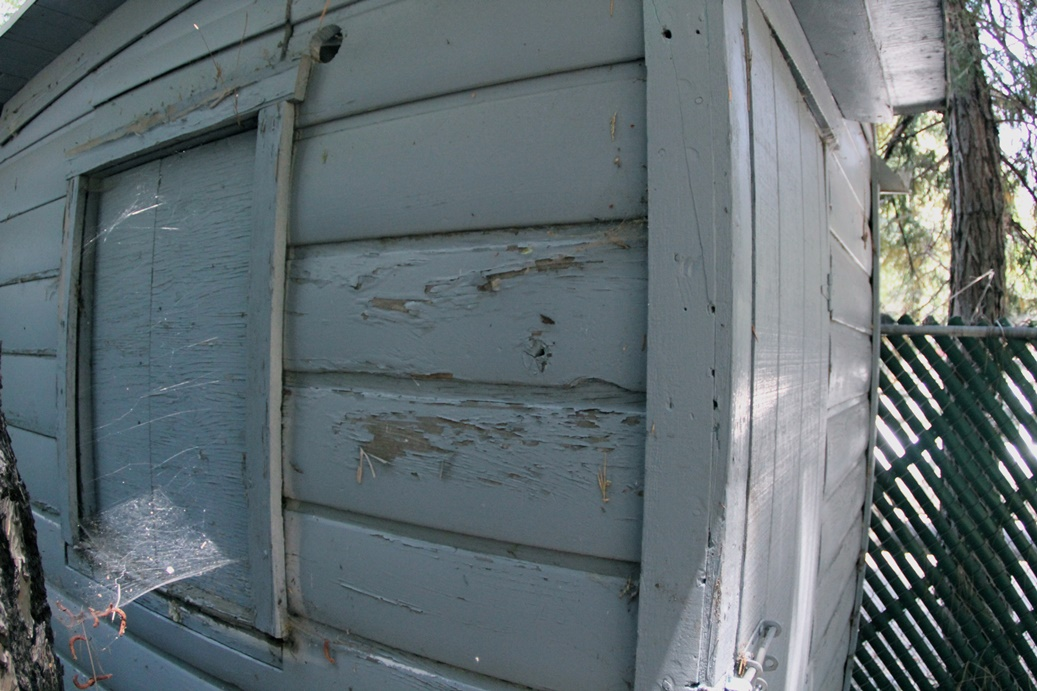 This home has lead paint in its siding. In poor, flaking condition like this it is a lead poisoning hazard.