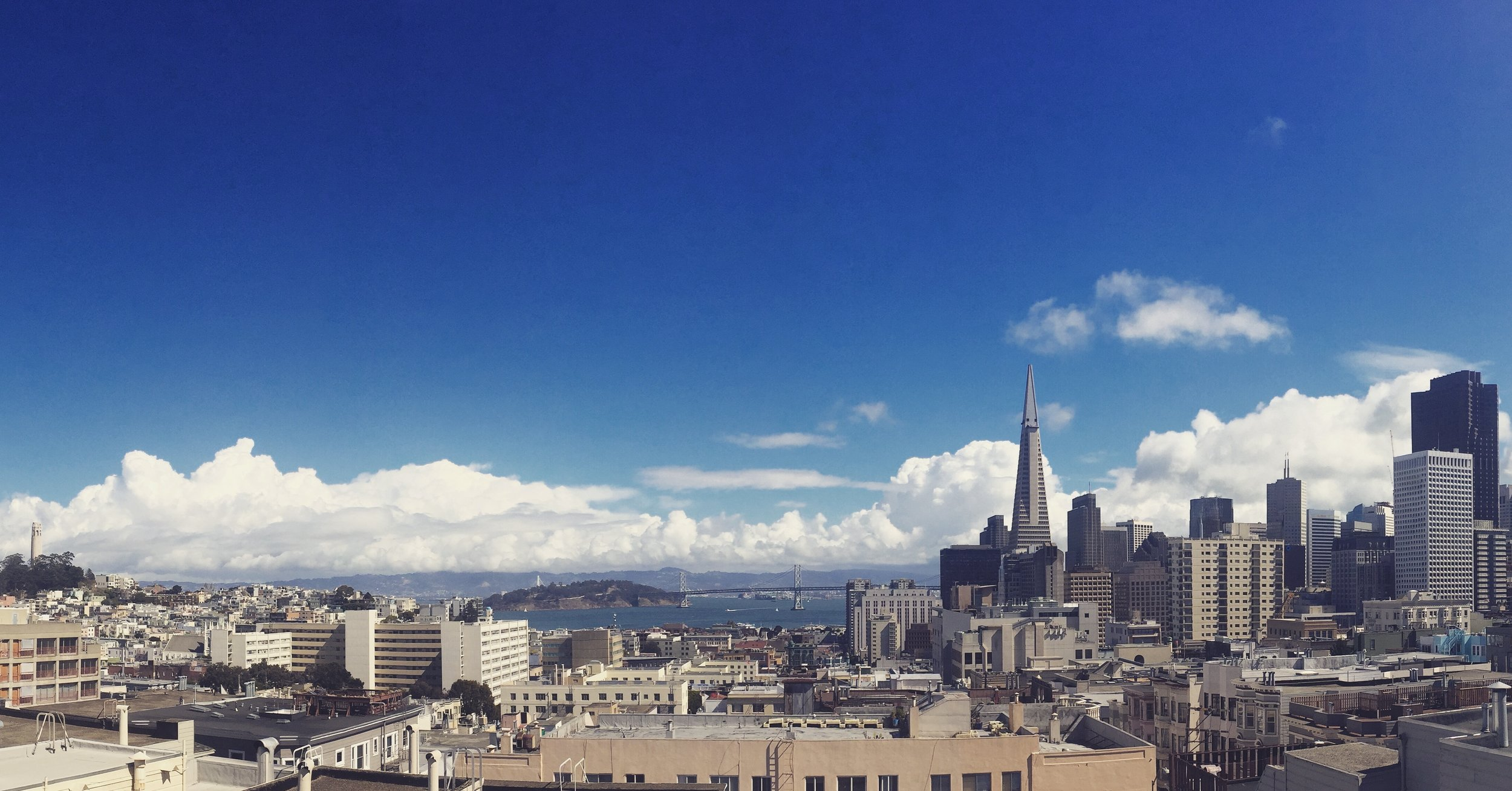 The view from our rooftop.  Good Medicine Picture Company is based in San Francisco, California.