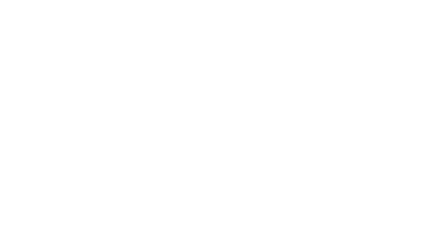 RaleighLogowhitetransparent.png
