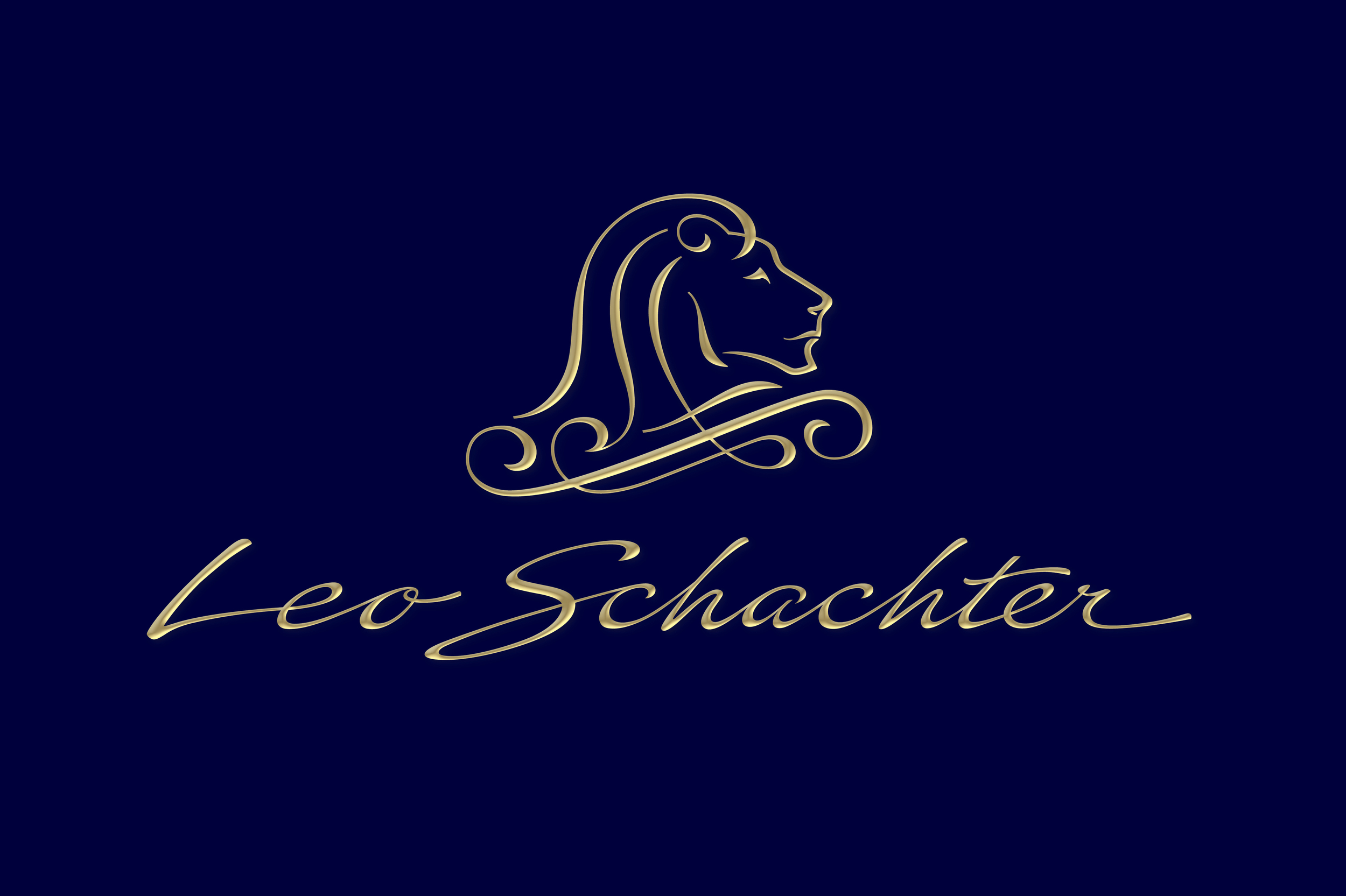 _Leo Schachter homepage.jpg