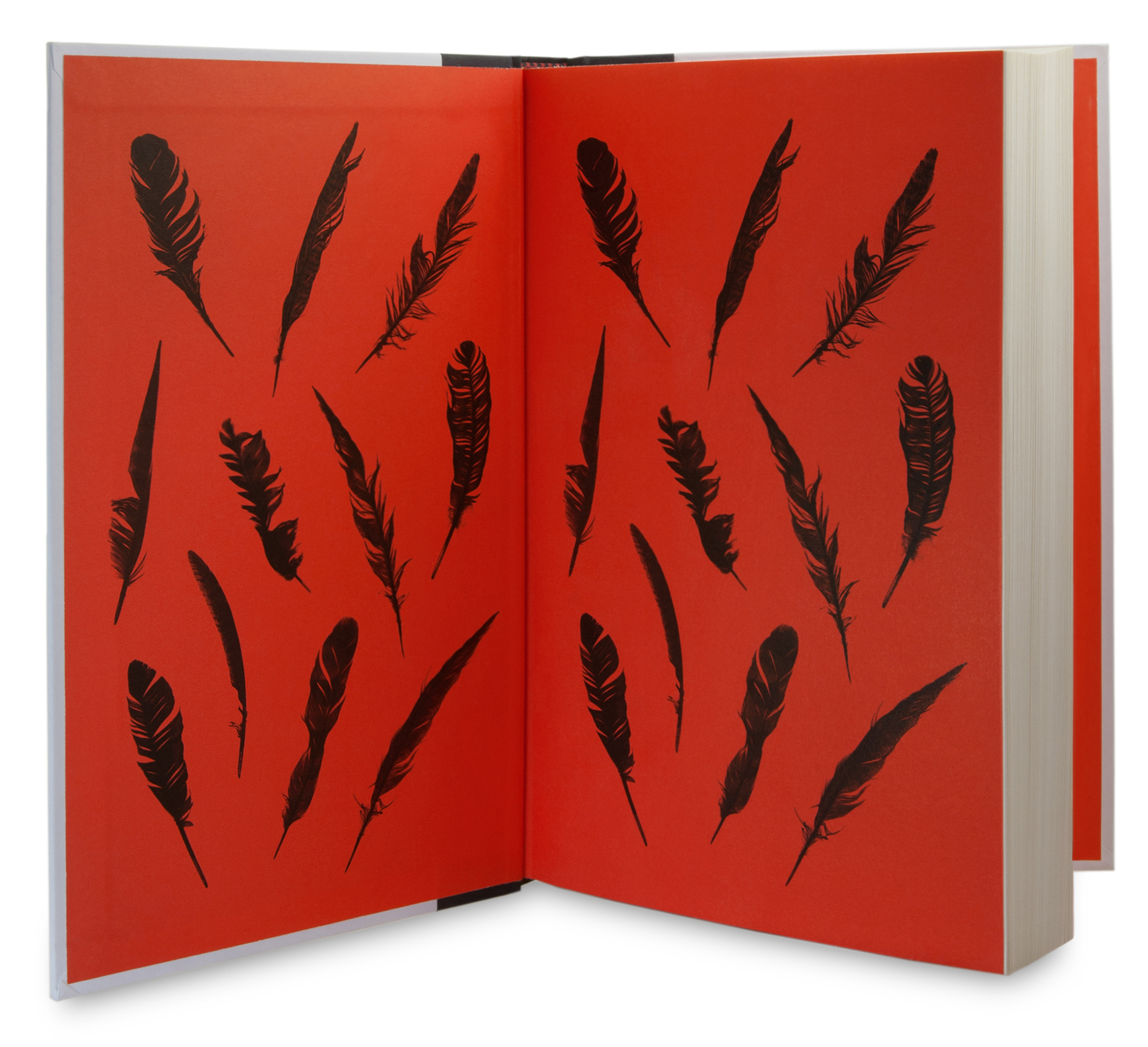 Grand Central Publishing |  The   Story of Beautiful Girl  endpapers